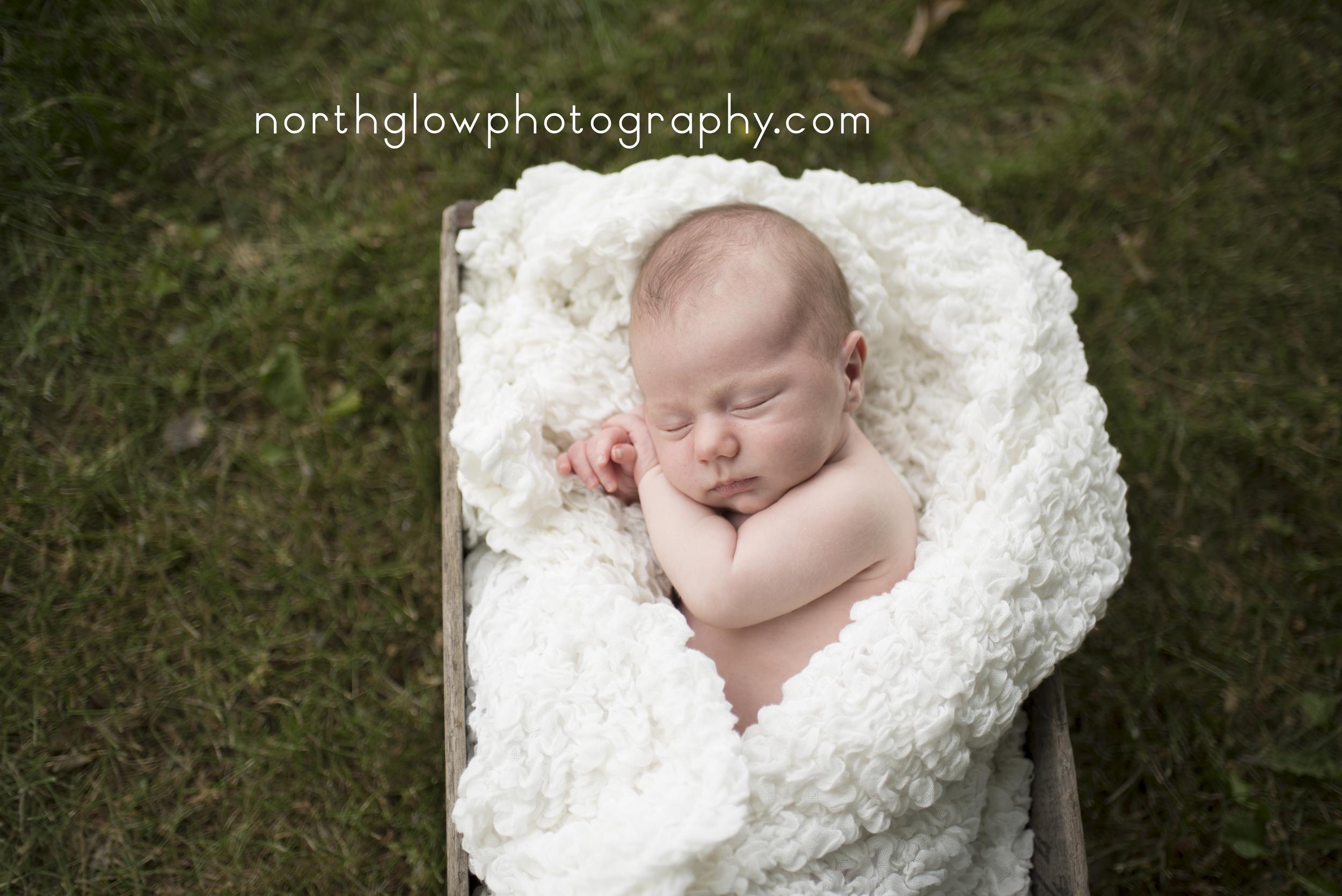 Julian Newborn | NorthGlow Photography