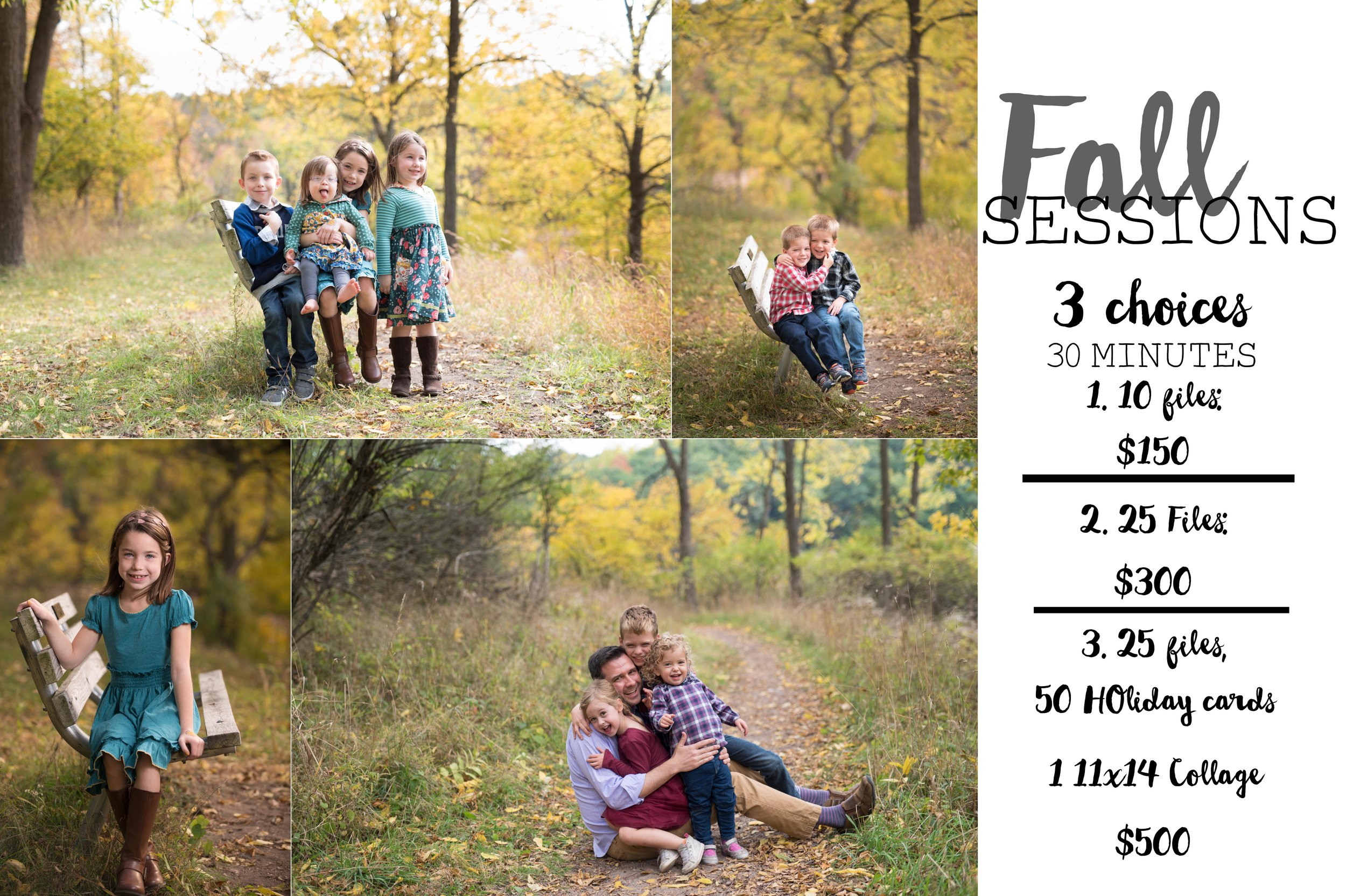 Fall sessions with north glow.jpg