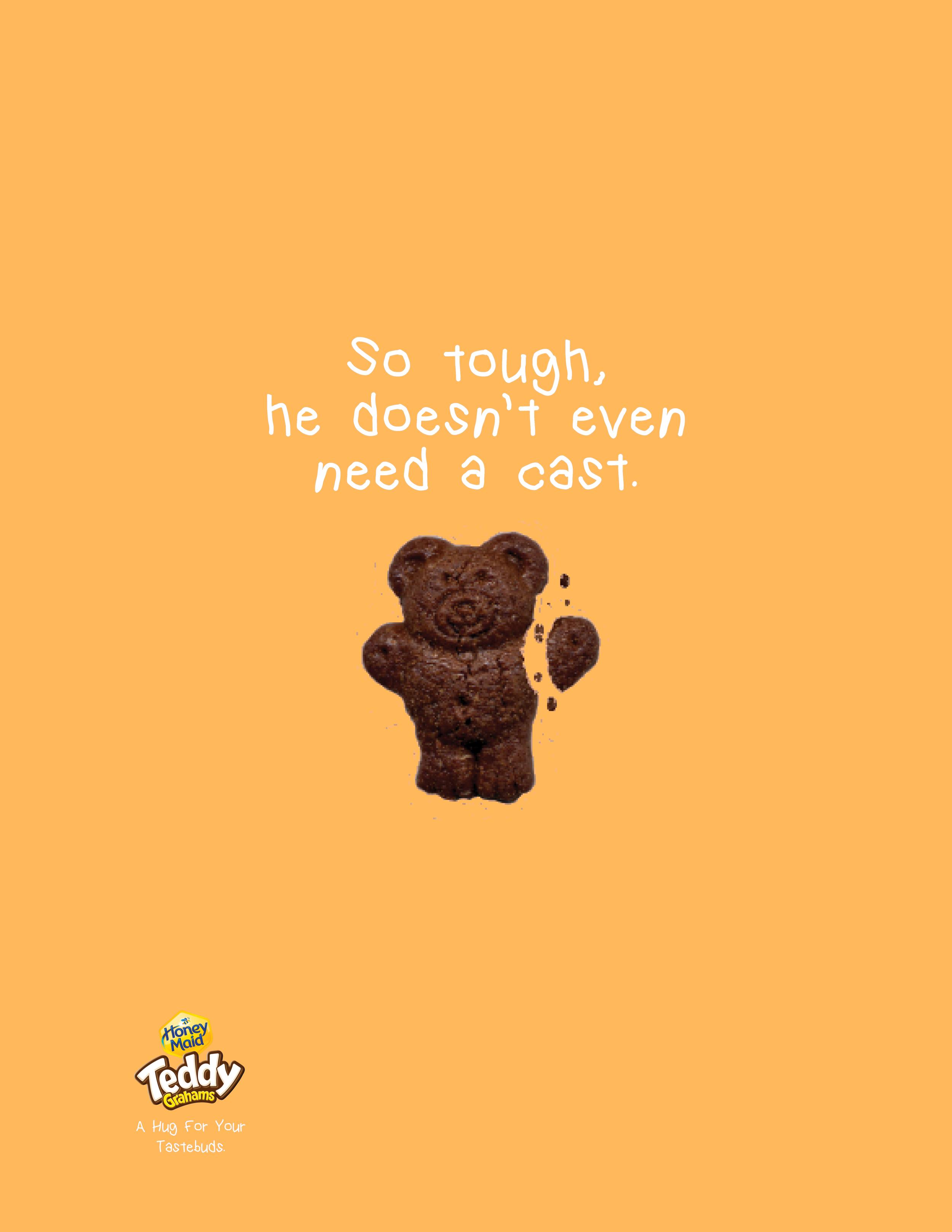 teddy2.0 copy.png