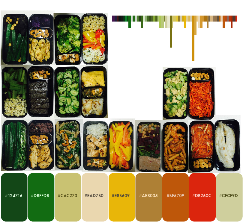 The chart at the corner shows the frequency of each colour appearing in my bentos