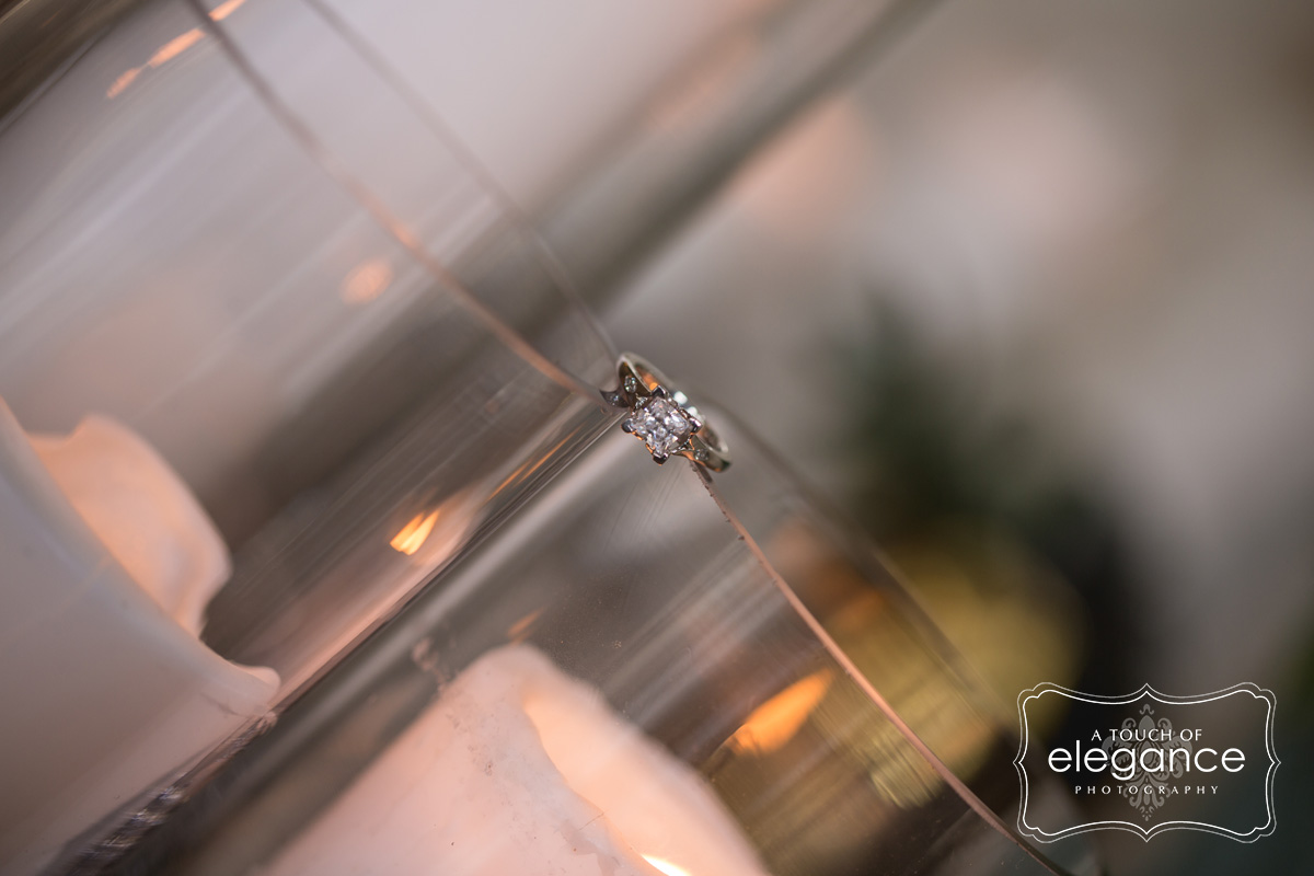 engagement-proposal-session-wedding-a-touch-of-elegance-photography-028.jpg