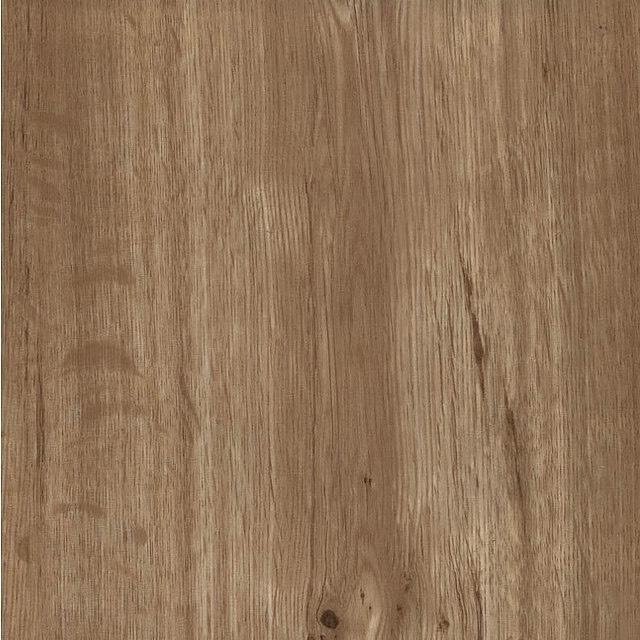 LL1099 Oak Tree