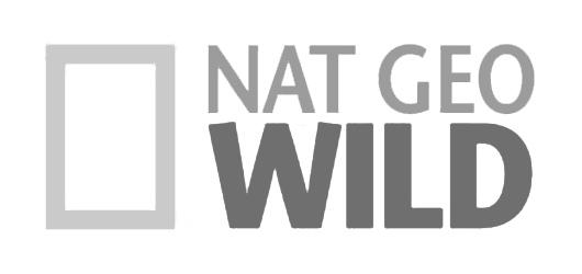 NATIONAL_GEO_WILD.jpg