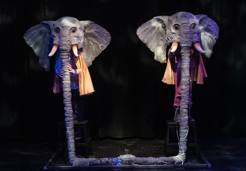 elefant03.jpg