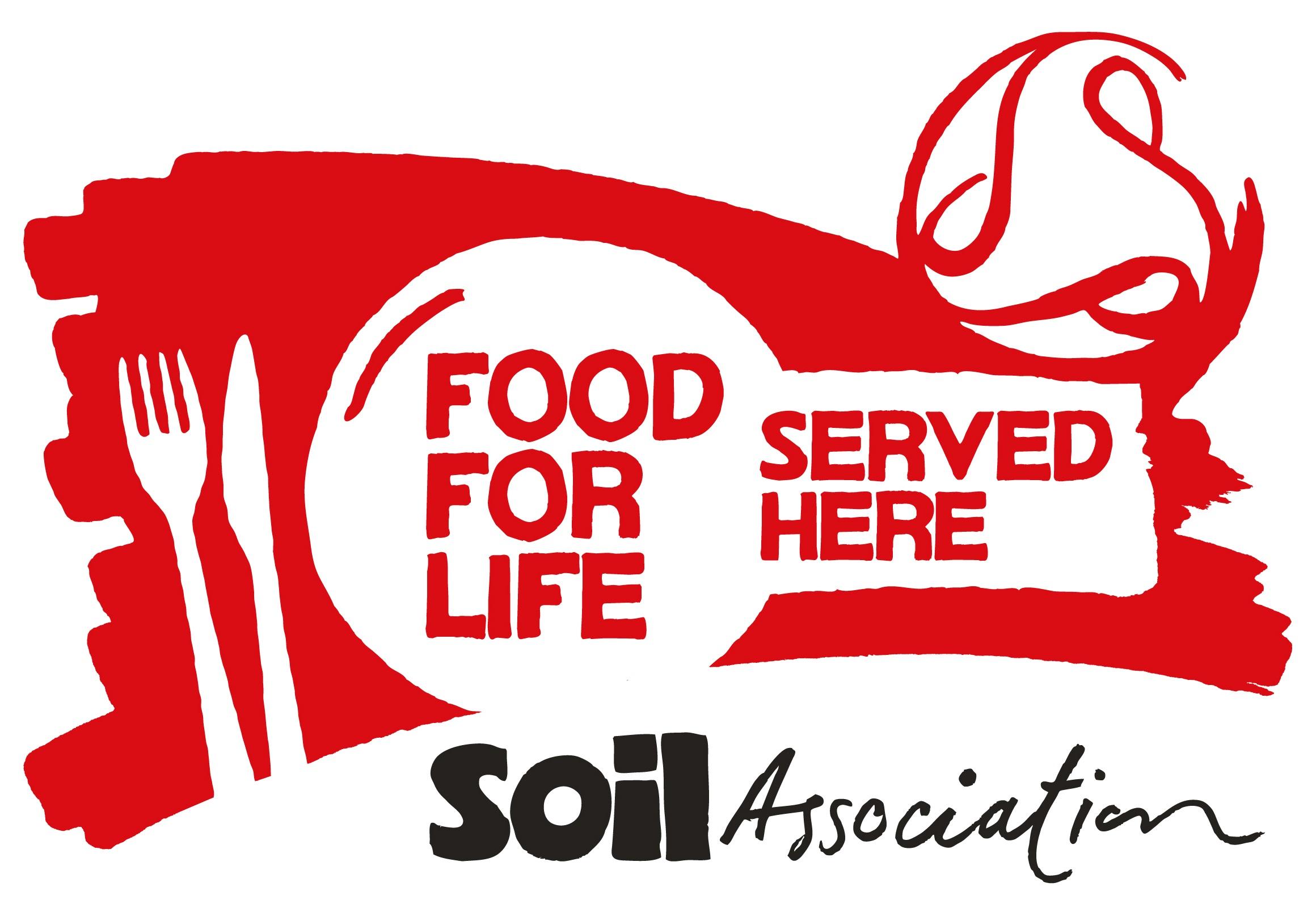 SA-FFL-Logo-RGB main[5354].jpg