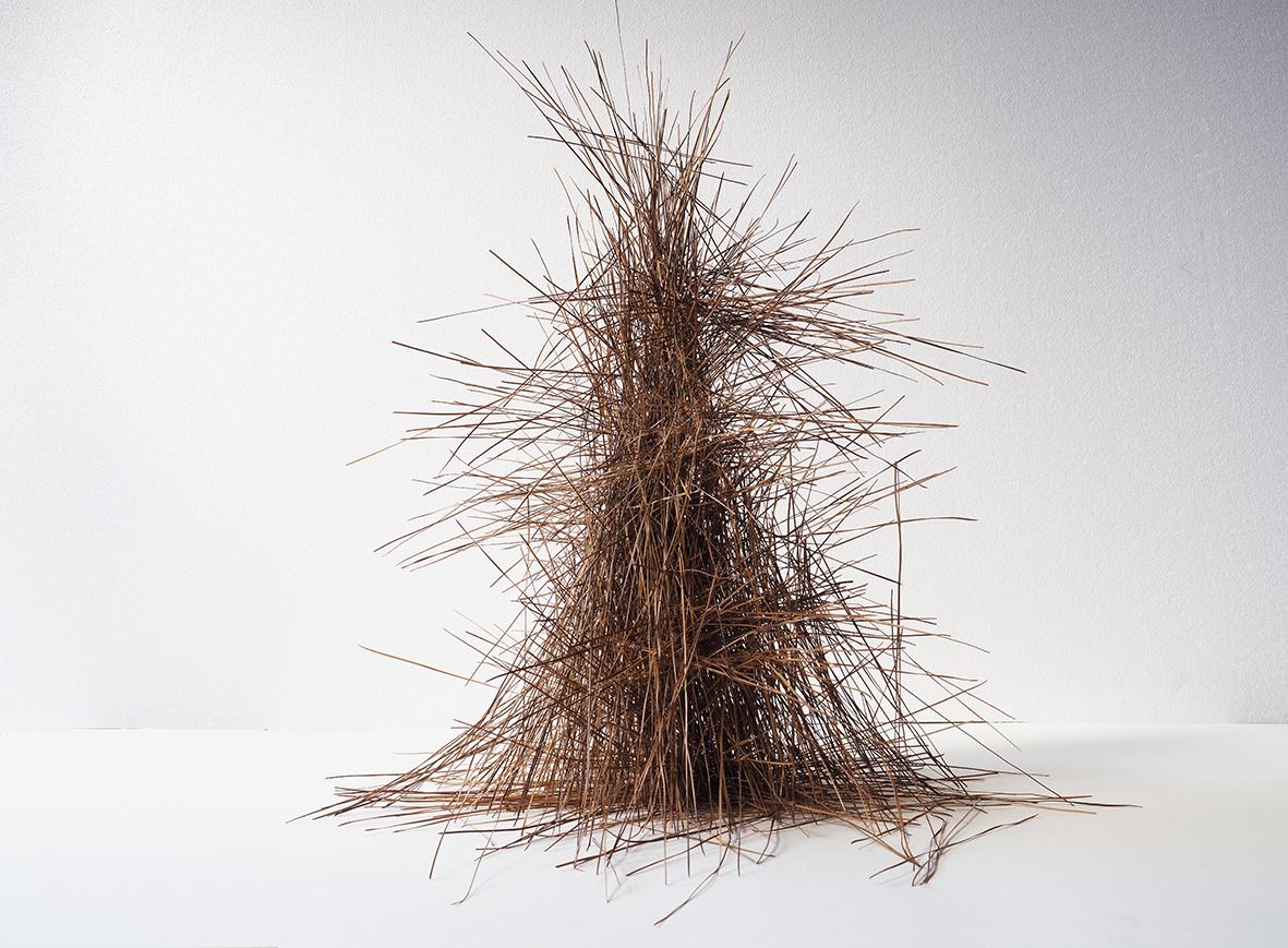 Choreographies 2016. Pine needles pile. Digital print.