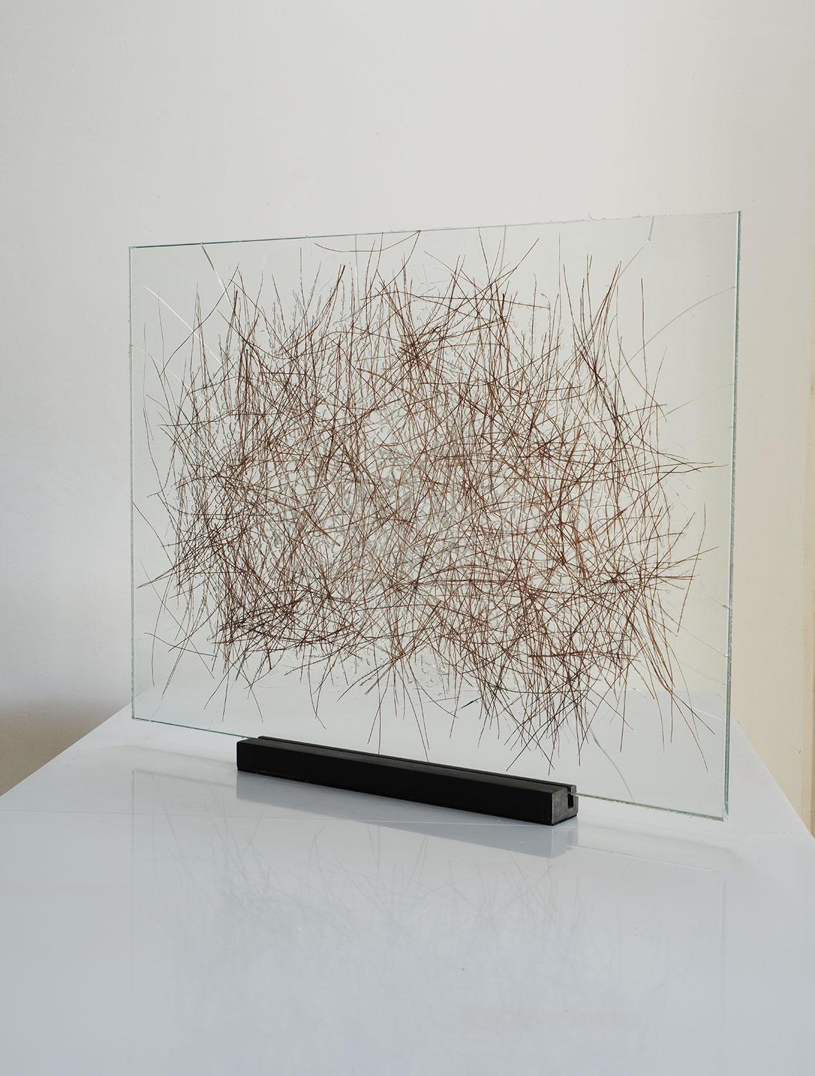 "Pine needles inserted in glass,2015.50cm x 70cm. (19""x 28""). (16""x16"")"