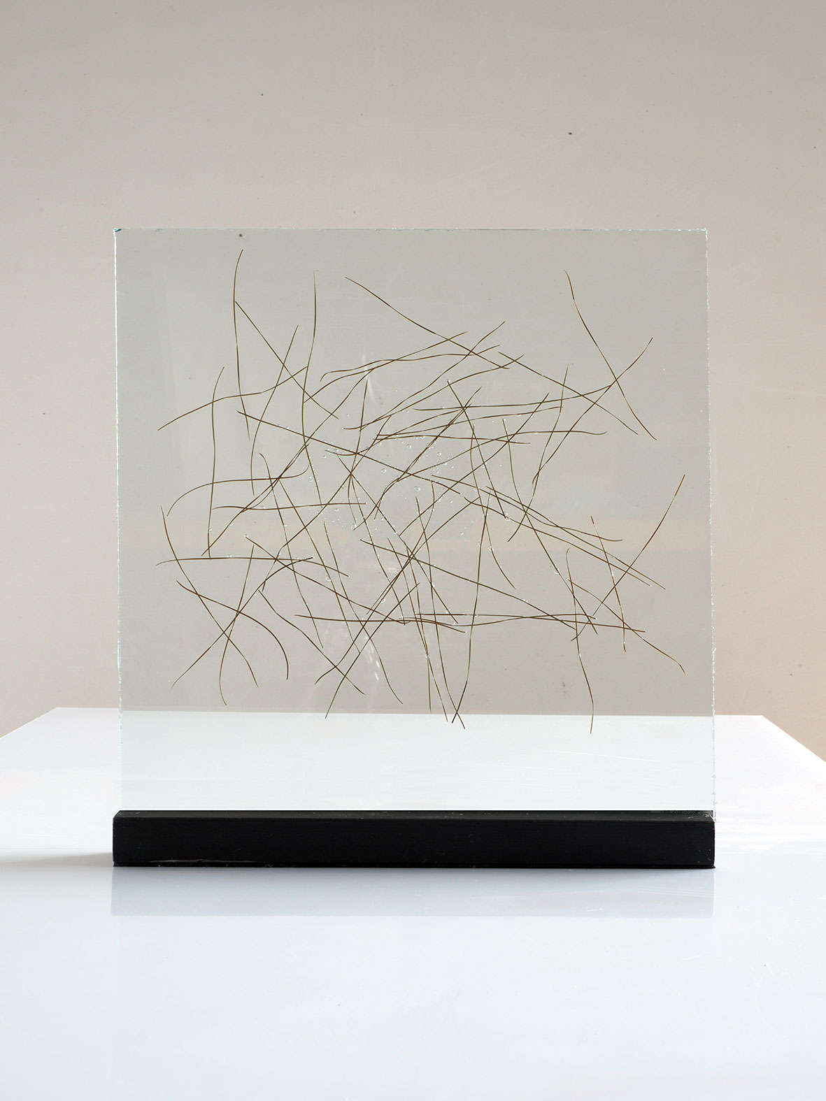 """Pine needles inserted in glass 2015. 40cm x 40cm.(16""""x16"""")"""