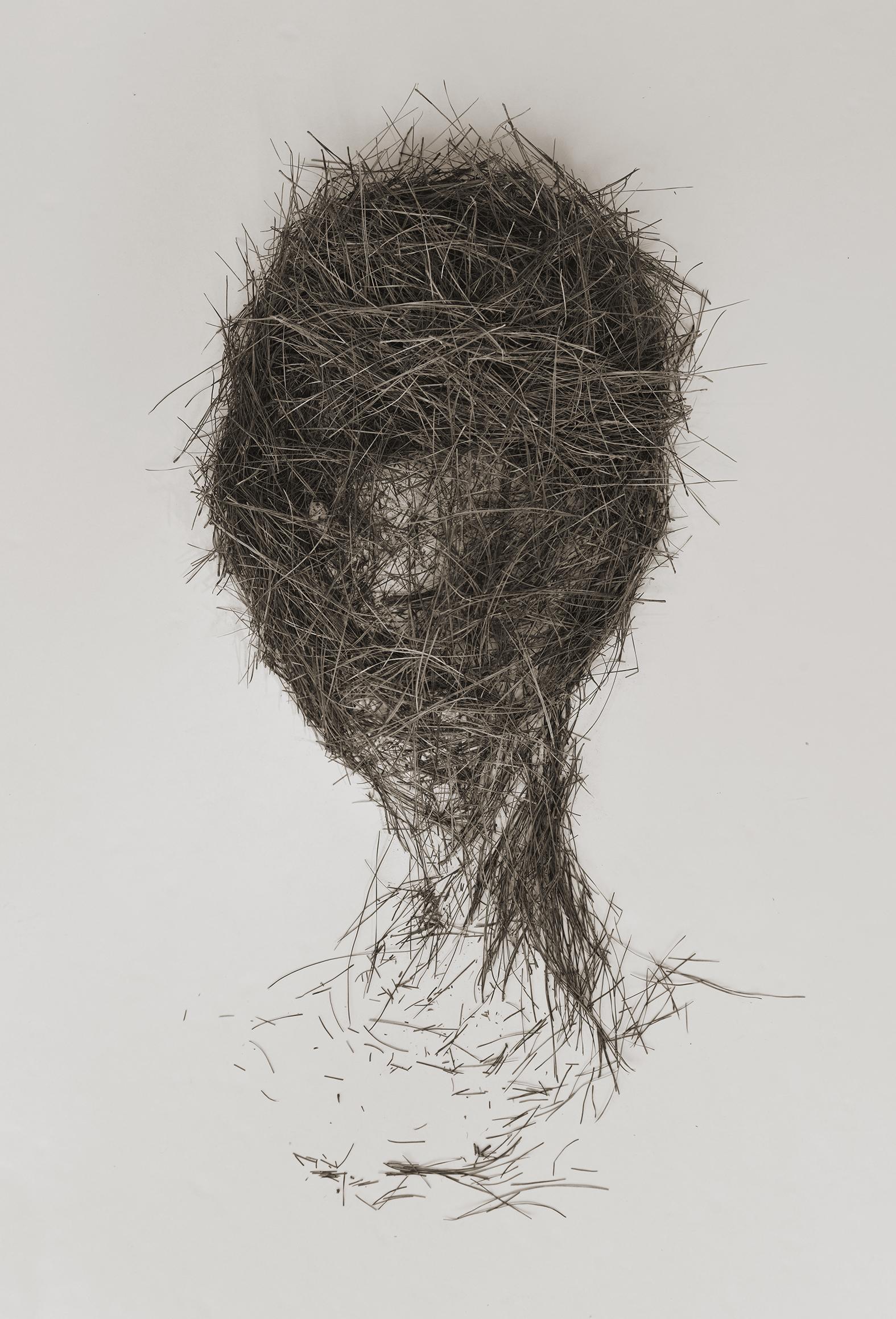 Head of Edith, pine needle drawing. Digital print, 2016.
