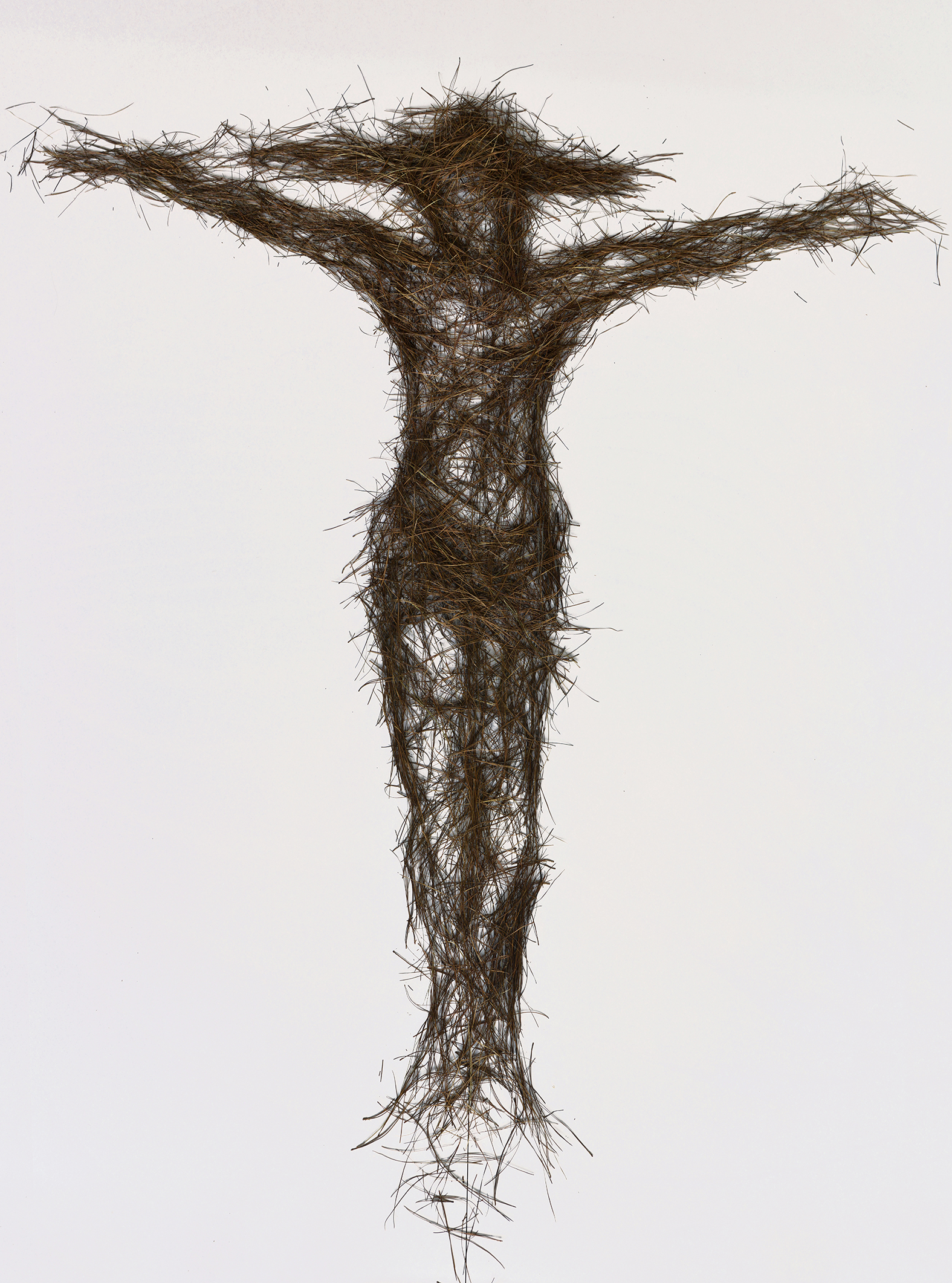 Cruxifixion of Jesus, pine needle drawing, 2016. Digital print on paper.