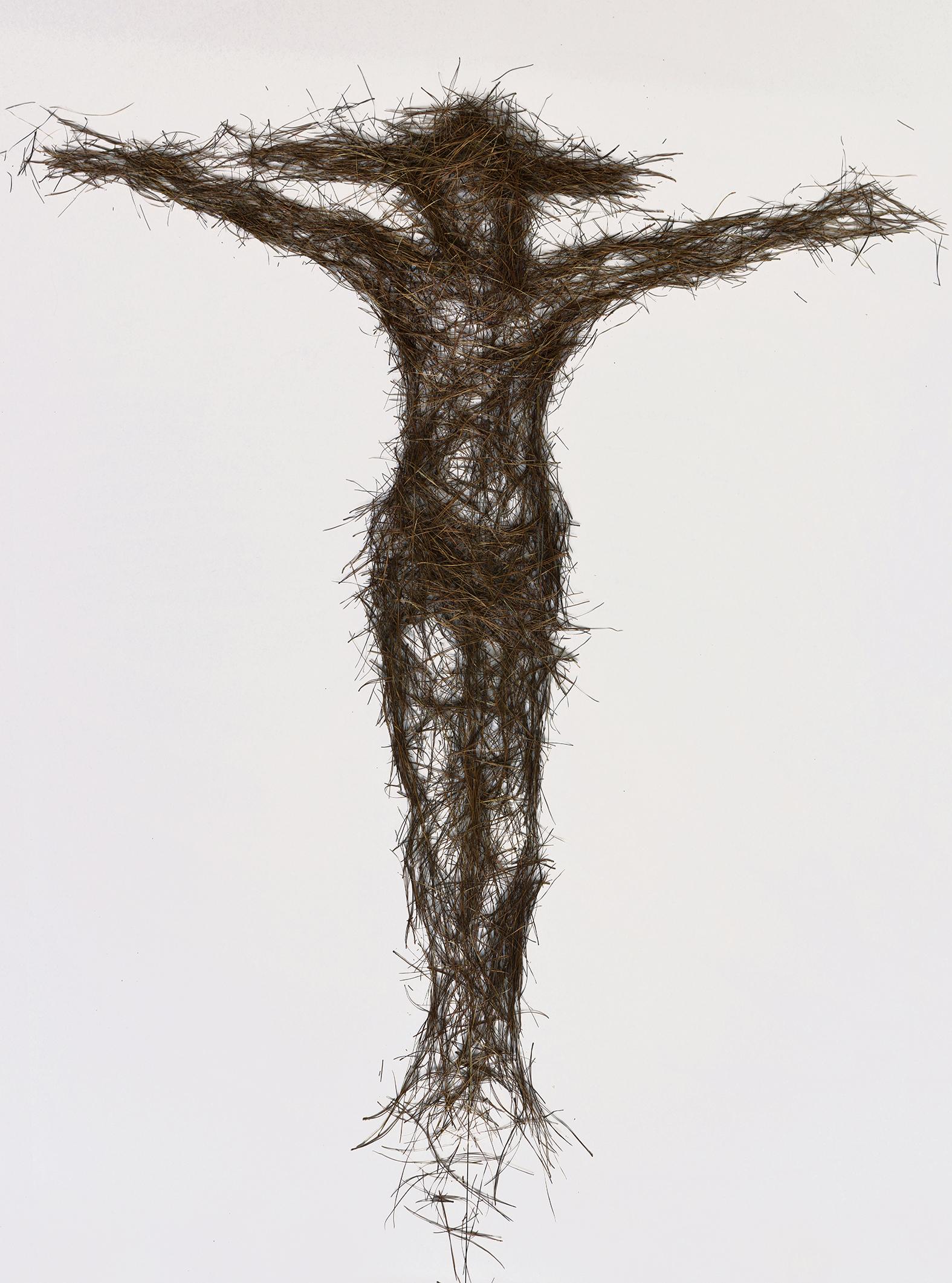 Cruxifixion of Jesus