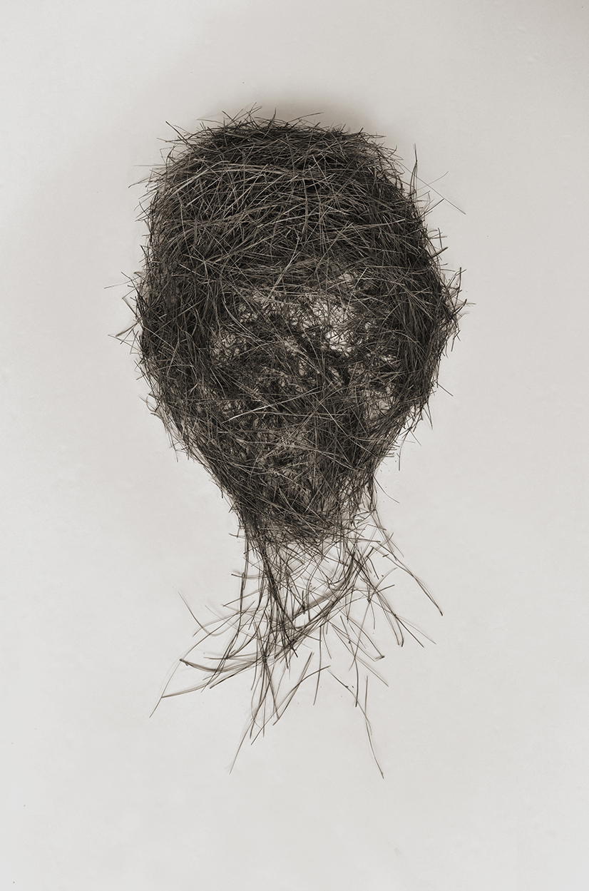 Head of Lot, pine needle drawing, 2016. Digital print on paper.
