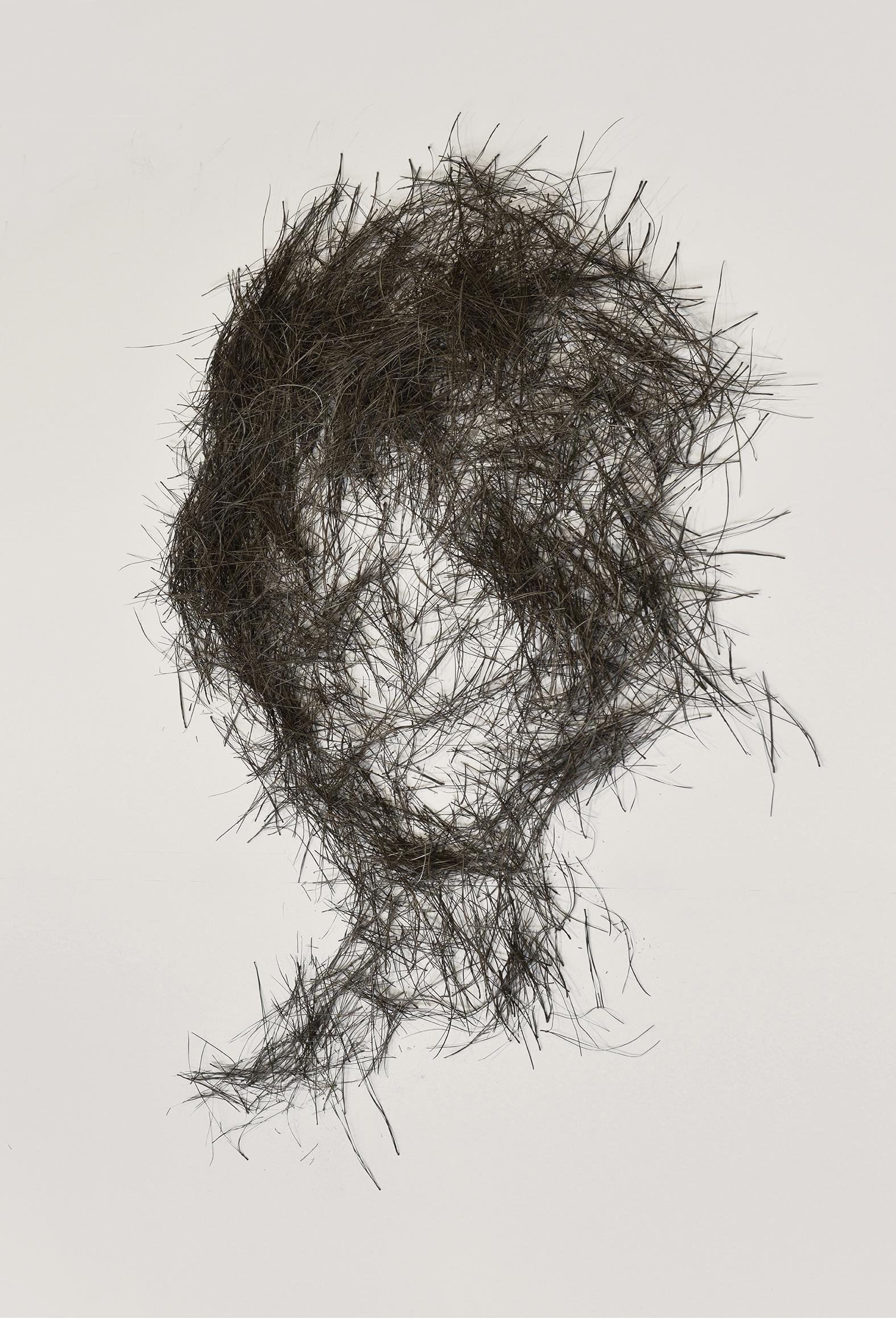 Innocent head, pine needle drawing, 2015. Digital print on paper.