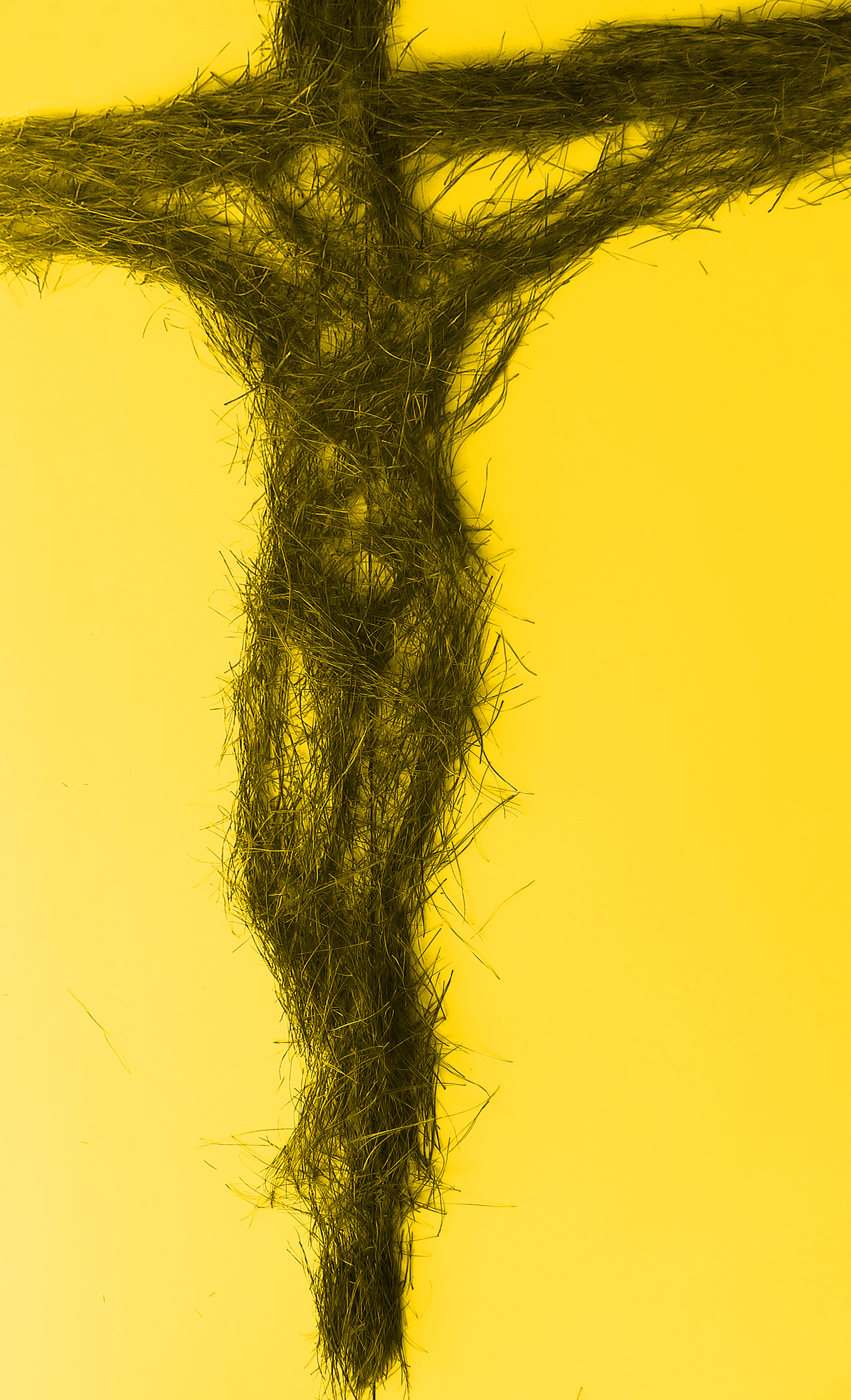 Crucifixion of the innoncent, 2015, digital print on paper.