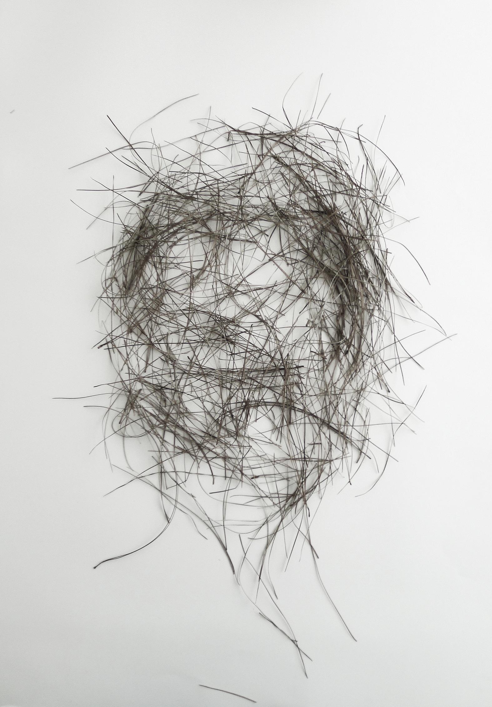 Head of innocents, pine needle drawing, 2015. Digital print on paper.