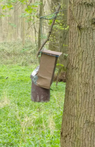 One of the modified nest boxes, with a camera sitting in the carton box. We laughed at how inelegant the design was – but it worked.