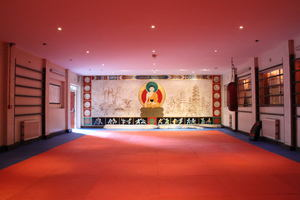 shaolin temple uk training hall.JPG