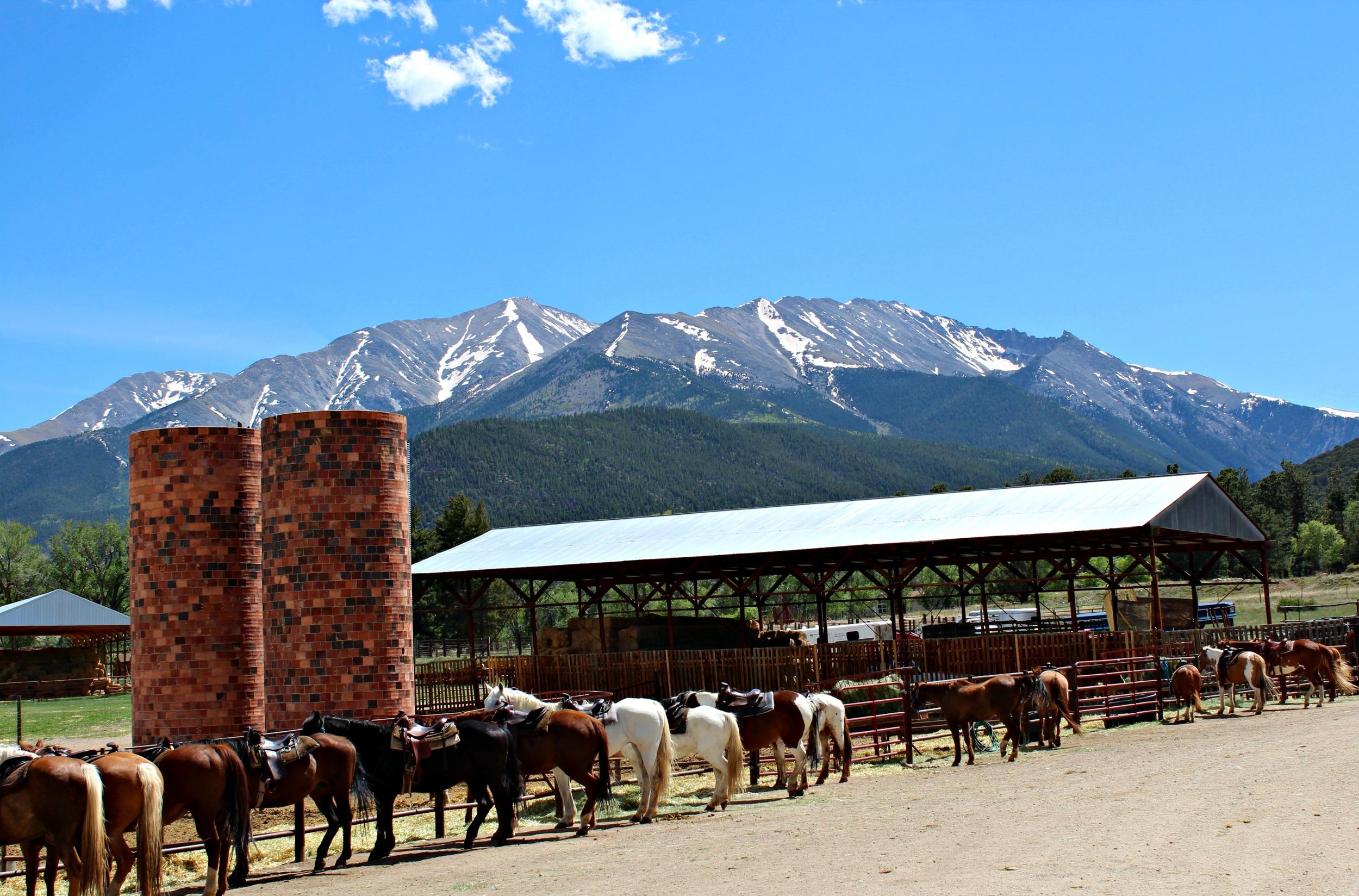 trail-west-horseback-riding