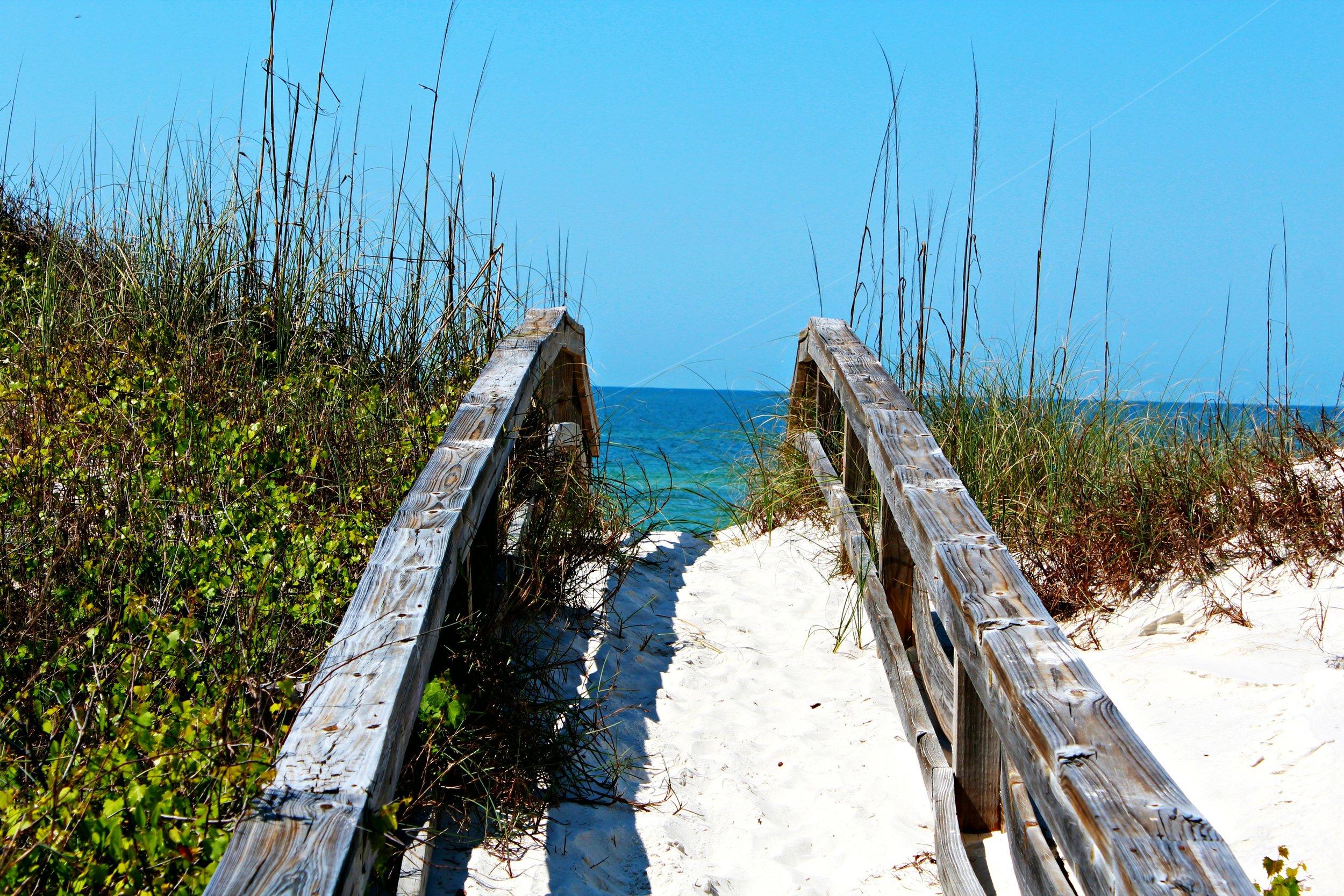 path-cape-san-blas-beach-florida