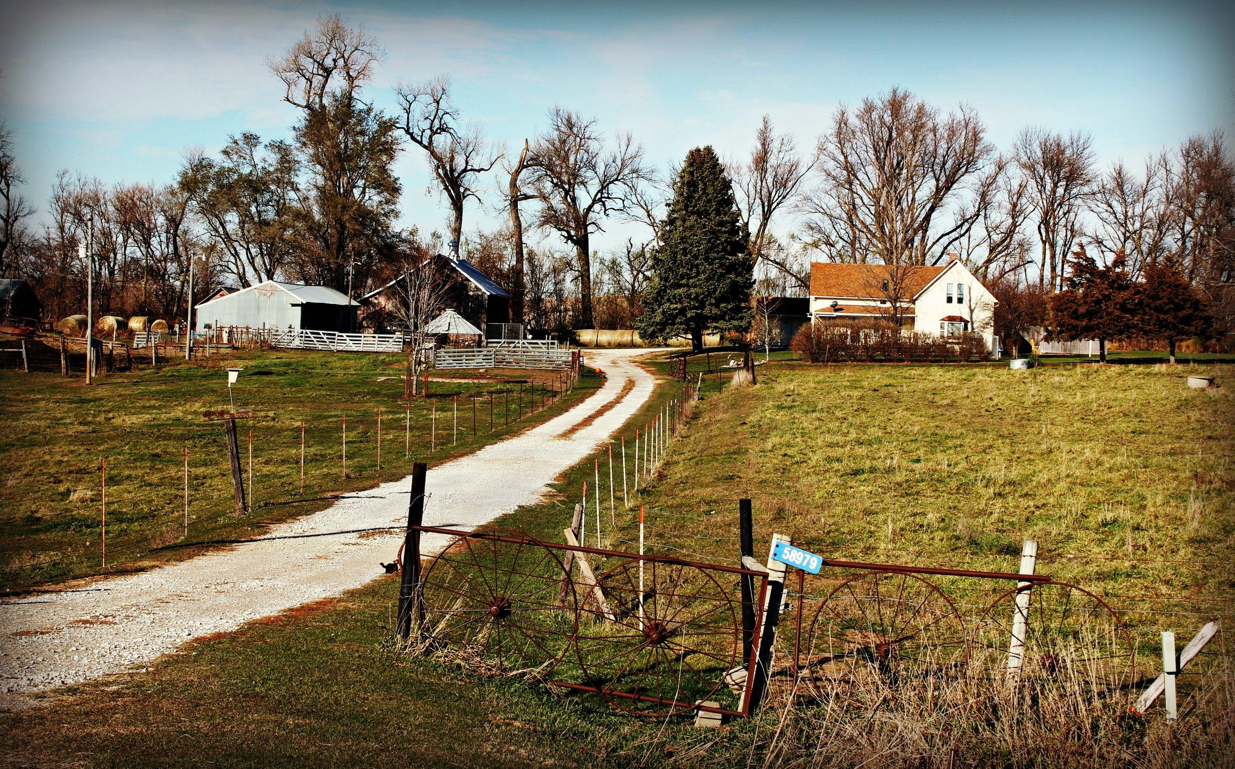 nebraska-homestead