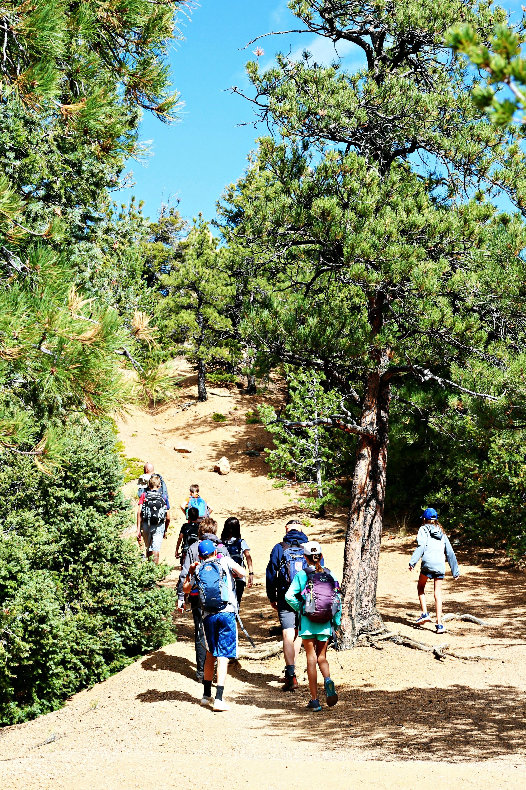 Hiking Cheyenne up hill.jpg