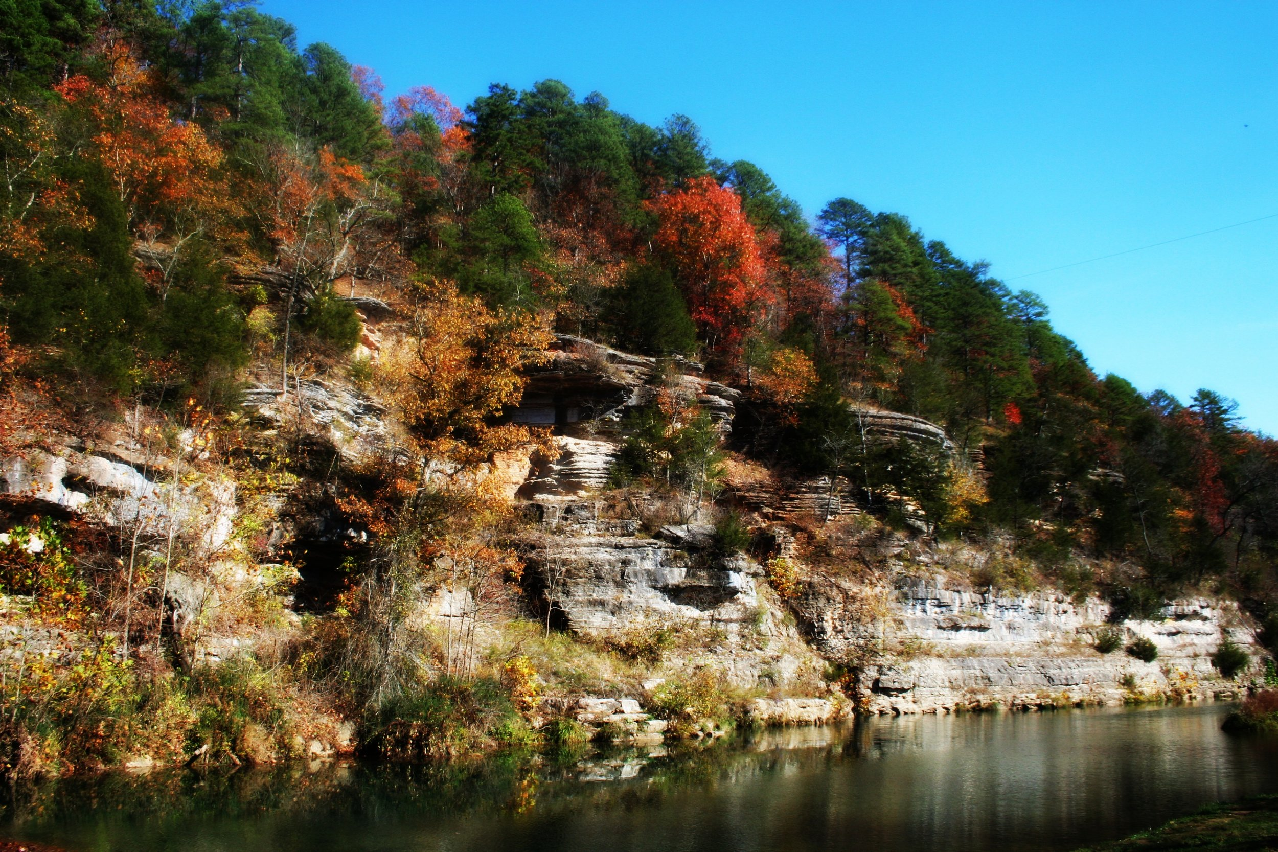 dogwood canyon cliffs missouri