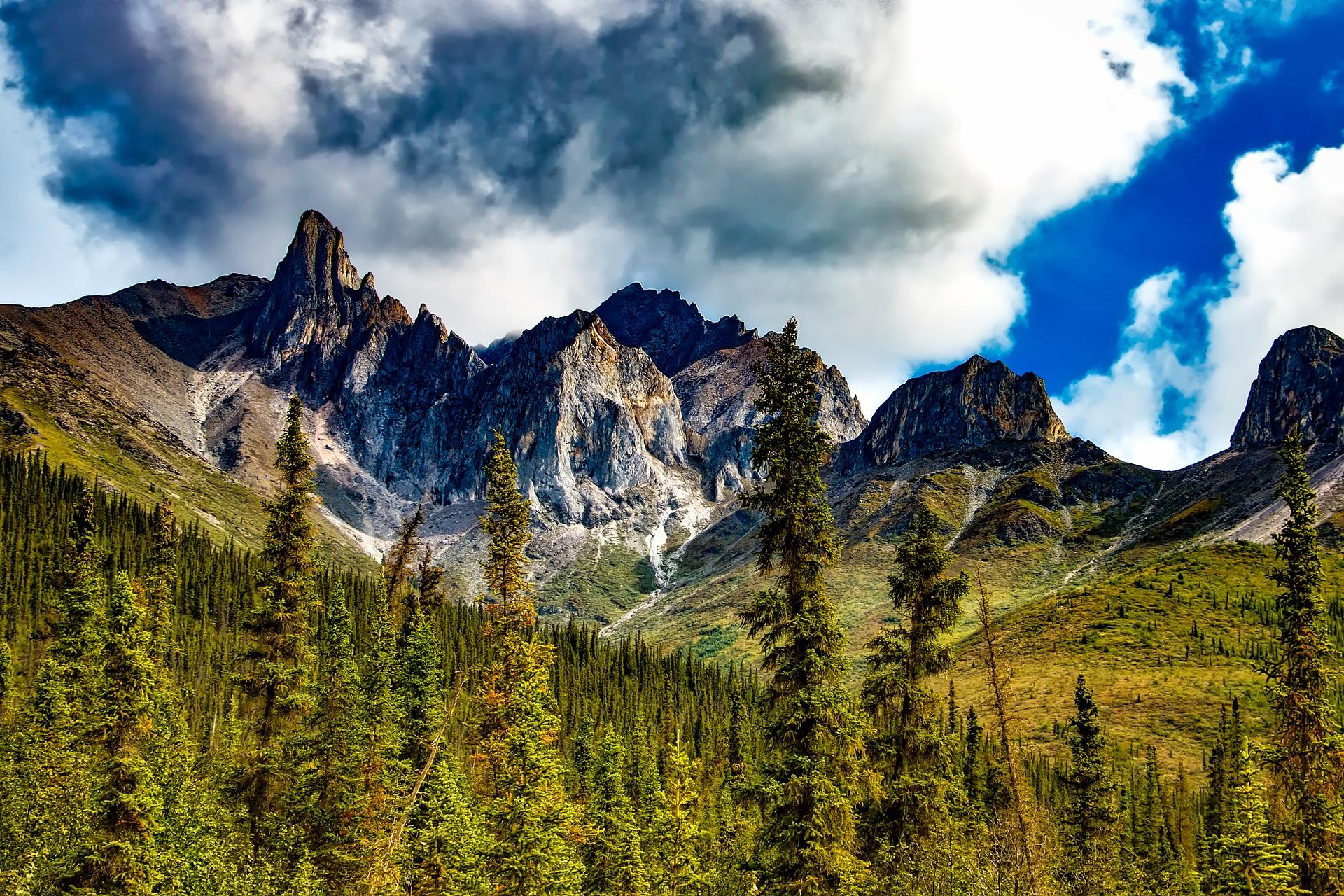 california-family-road-trip-yosemite-national-park