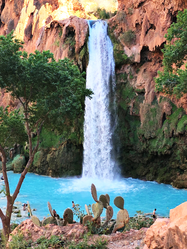 havasu-falls-grand-canyon-bucket-list-family-adventure