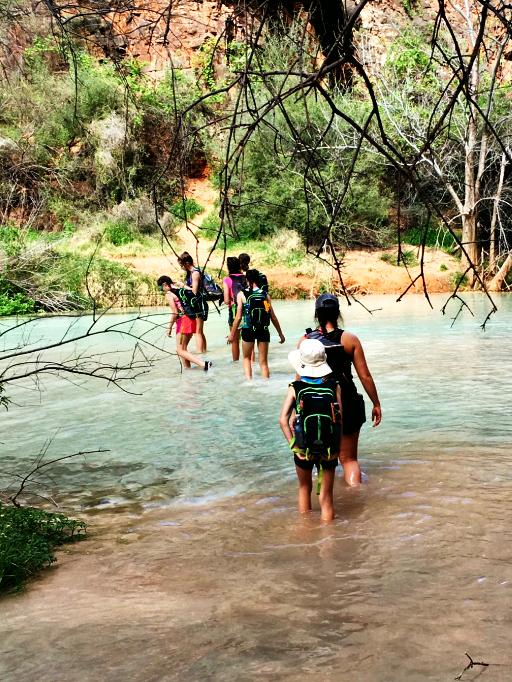 wading-havasu-falls-with-kids-spring-break
