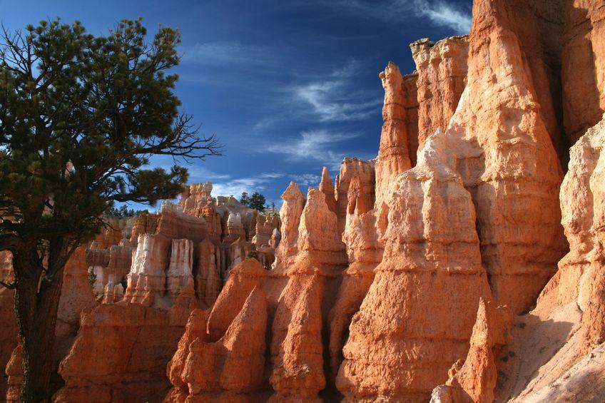 bryce-canyon-hoodoos-utah-road-trip