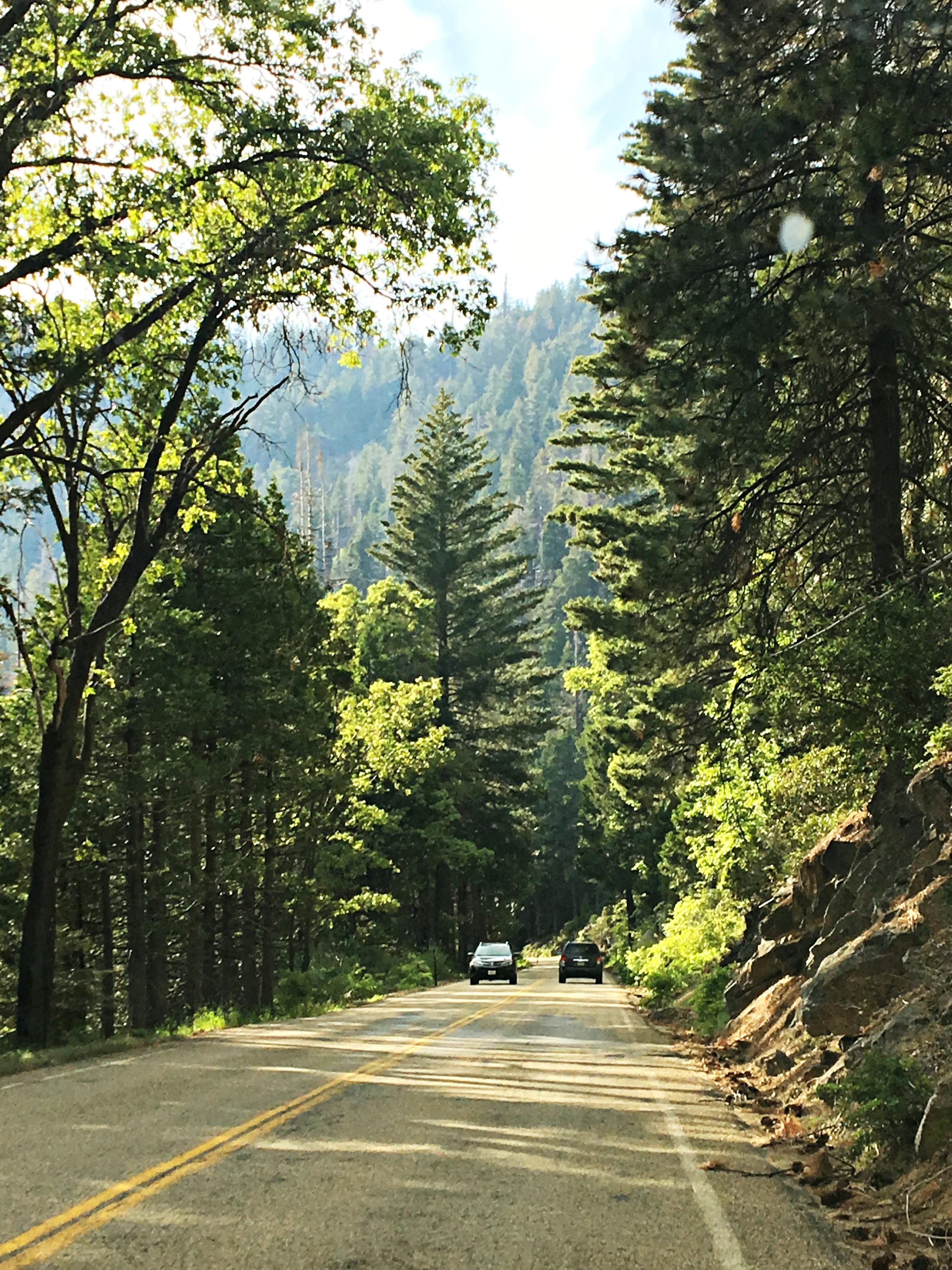california-family-road-trip