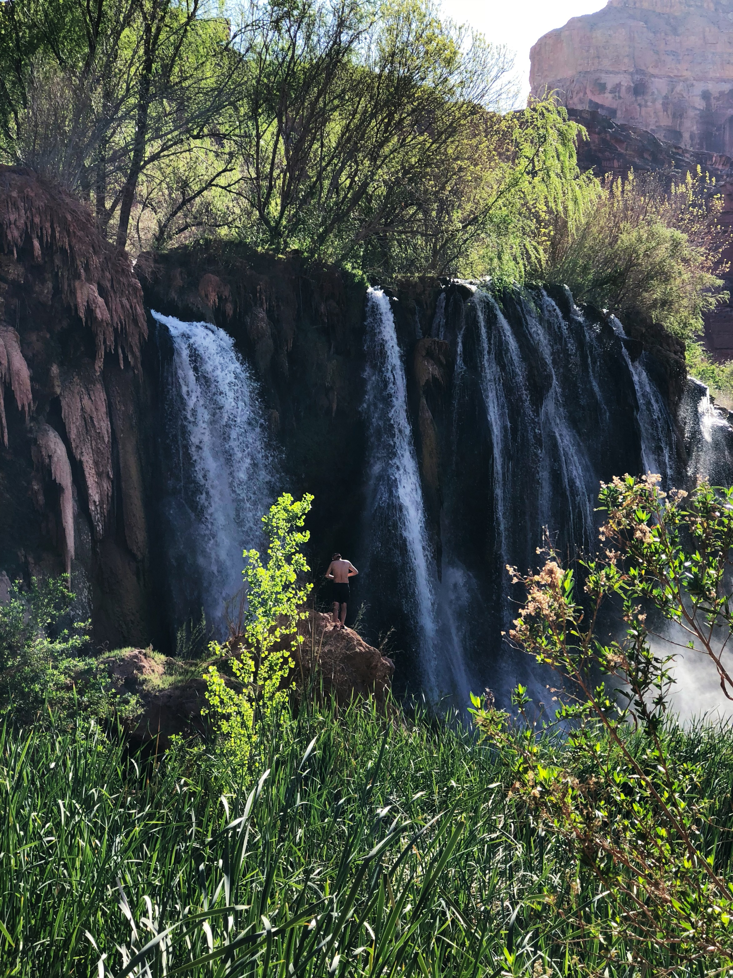 fifty-foot-falls-havasupai-reservation