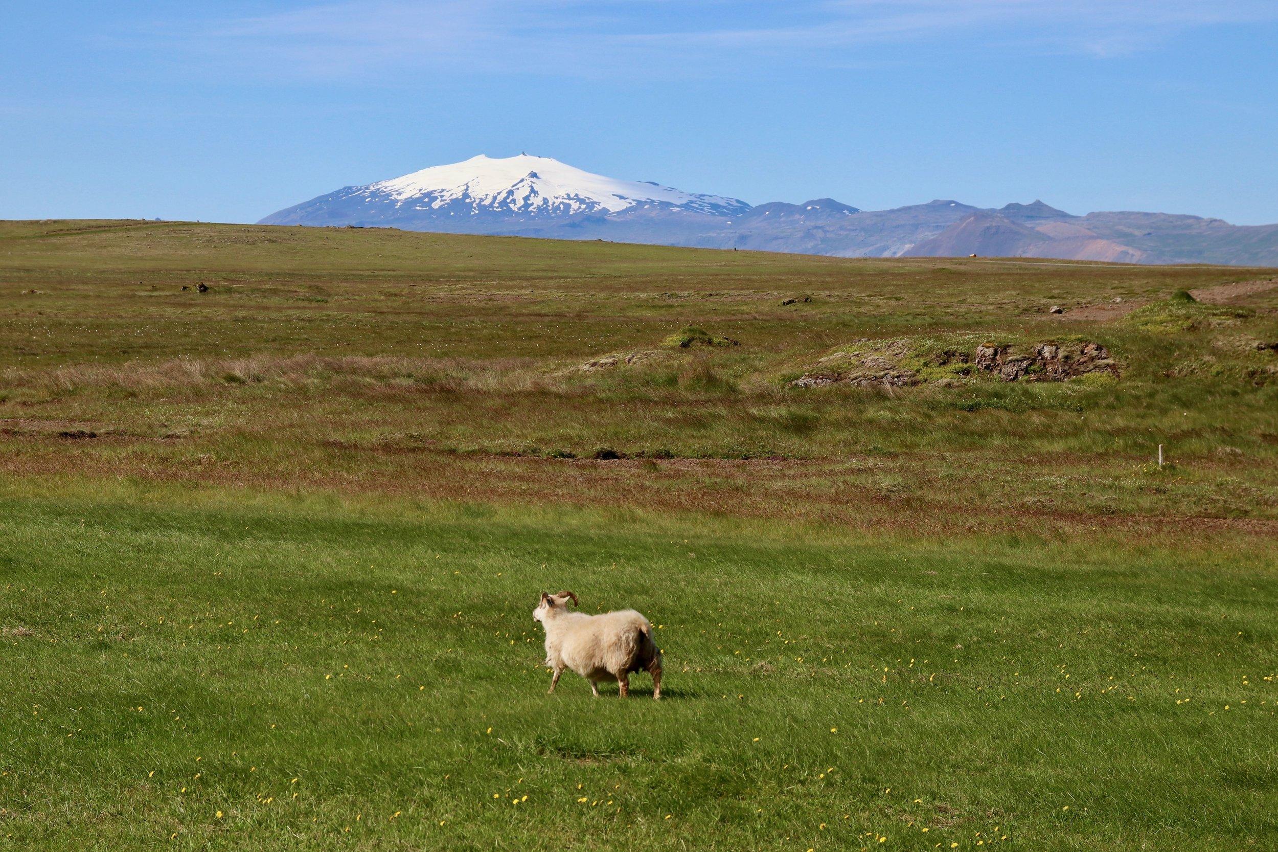 Snæfellsnes-Peninsula