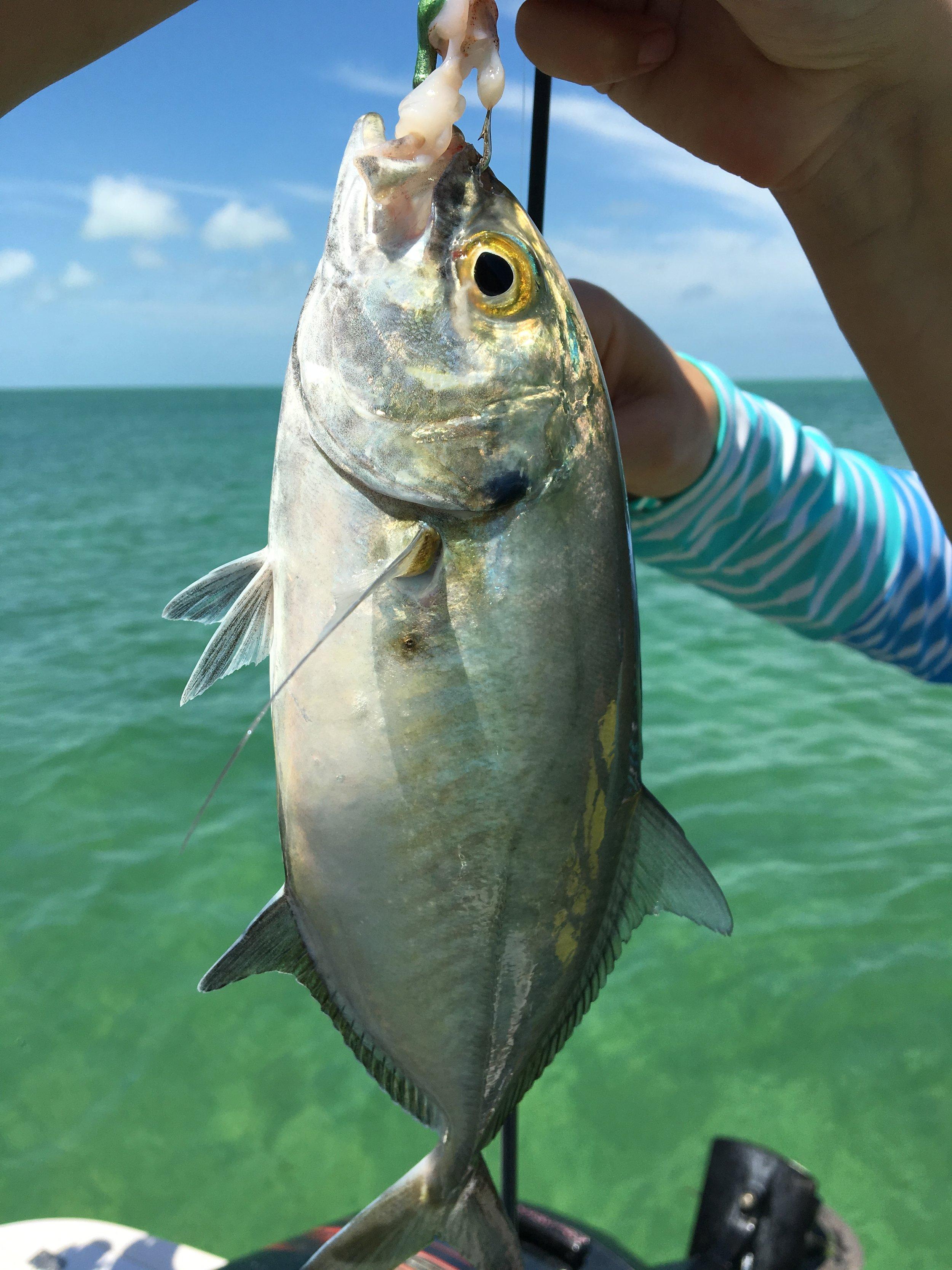 fishing-marathon-florida-keys