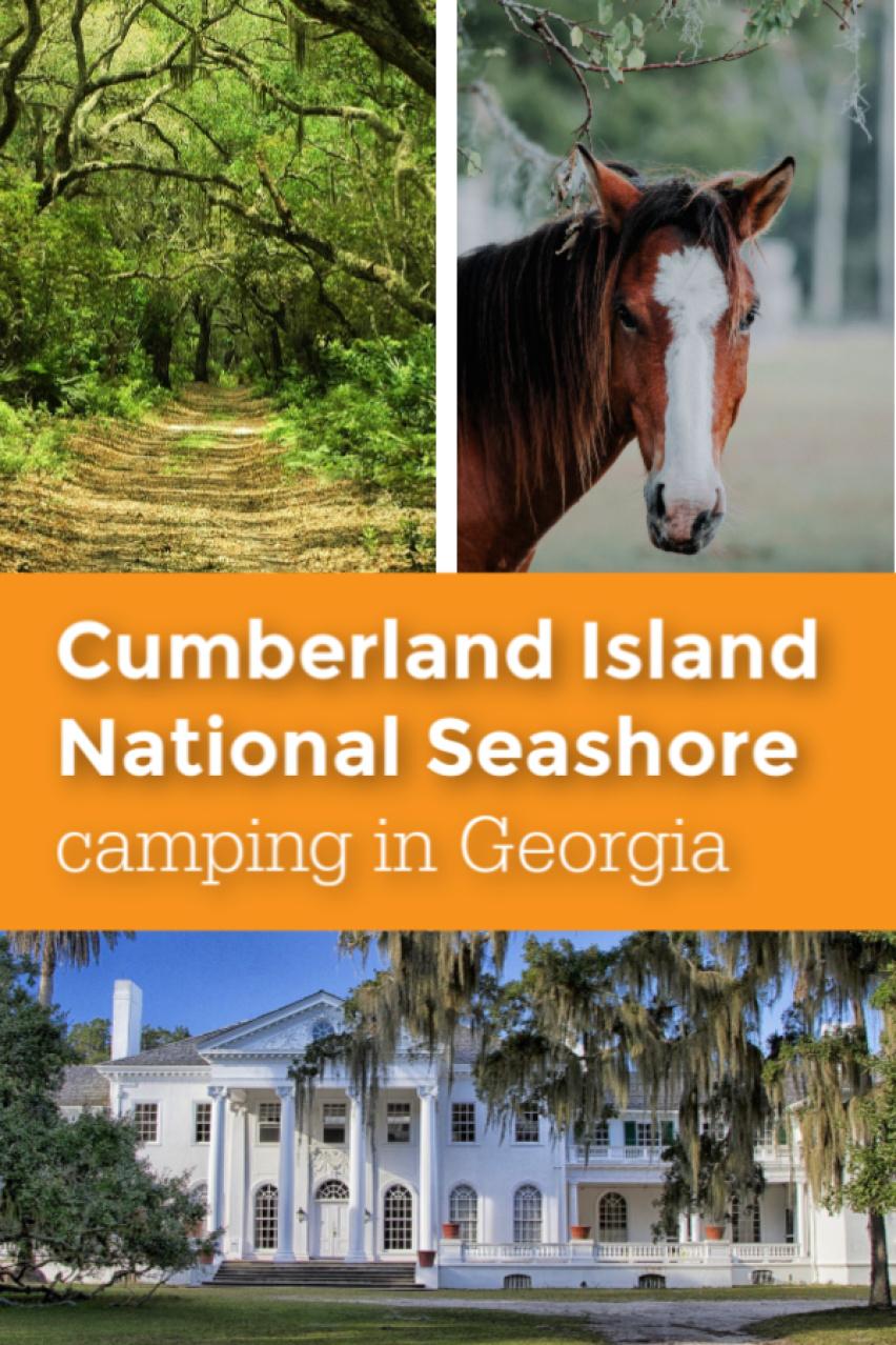 Cumberland Island camping in Georgia pin 4.jpg