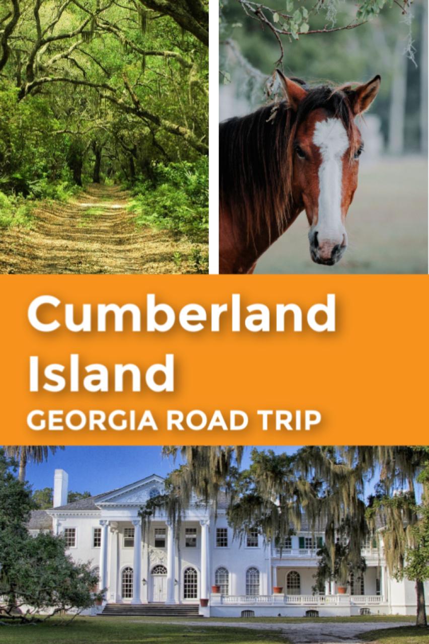 Cumberland Island Georgia Road Trip pin 3.jpg