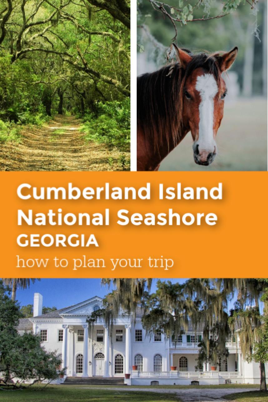 Cumberland Island National Seashore pin.jpg