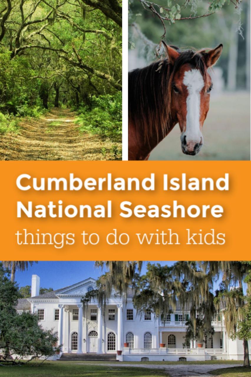 Cumberland Island National Seashore things to do with kids pin.jpg