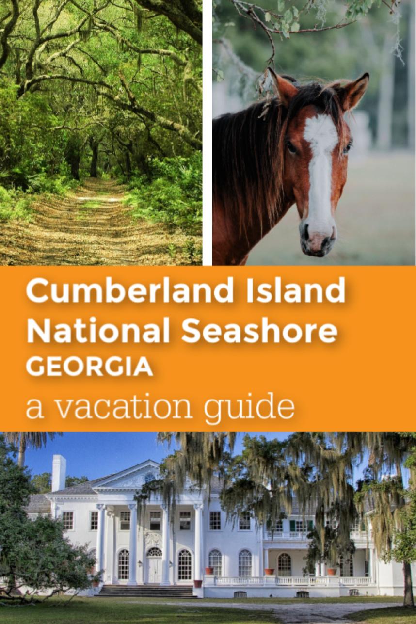 Cumberland Island National Seashore vacation guide pin 2.jpg