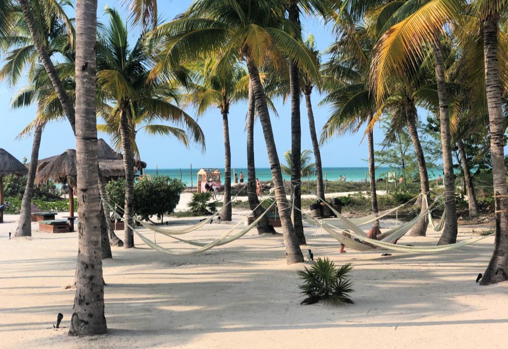 view from villas hm palapas del mar pool