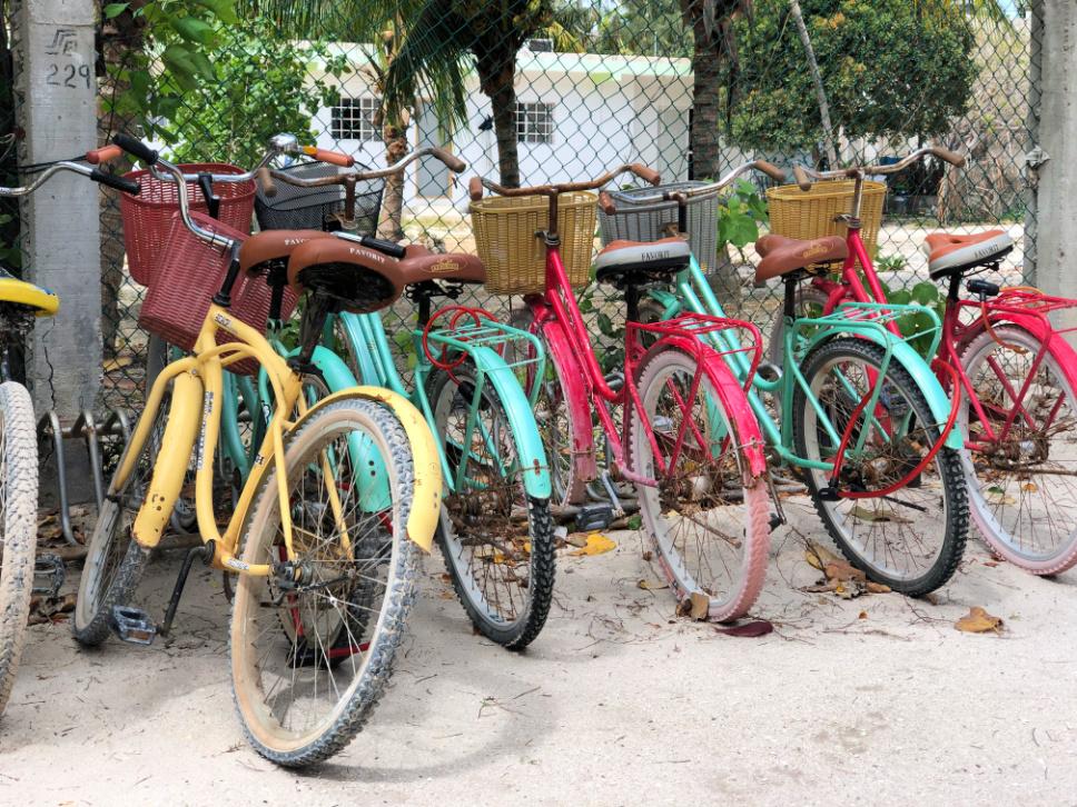 bicycles-rent