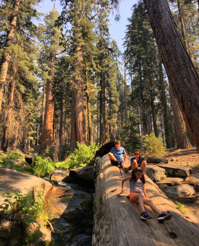 sequoia-kings-canyon-national-parks