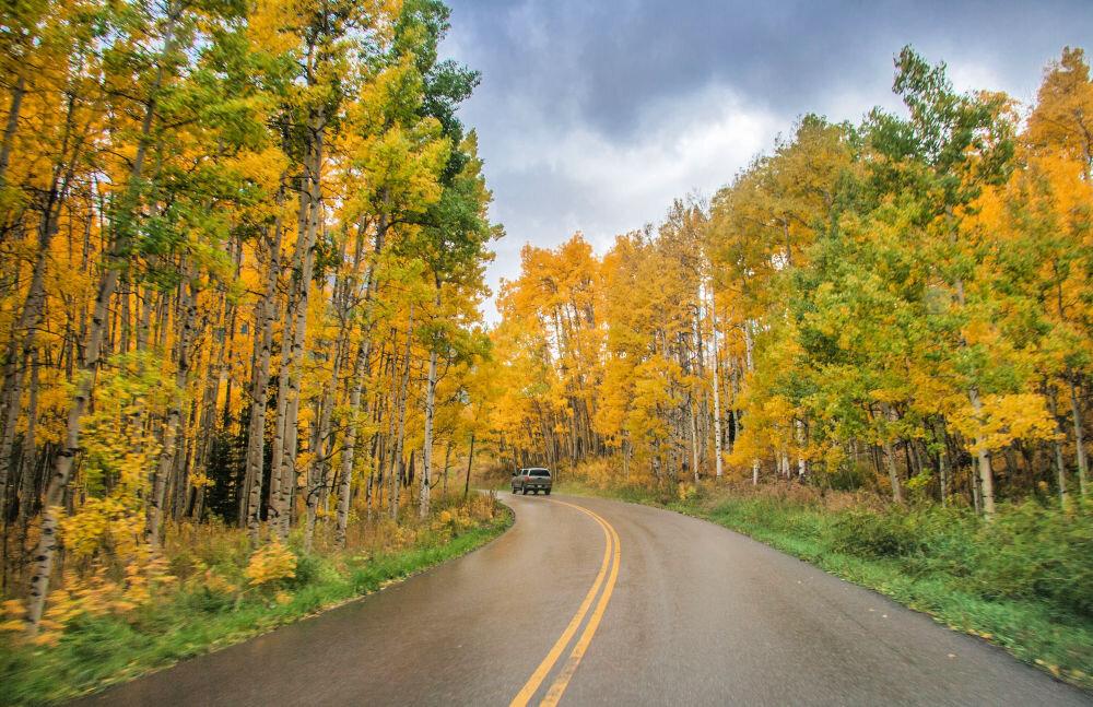 Independence-pass-colorado-fall