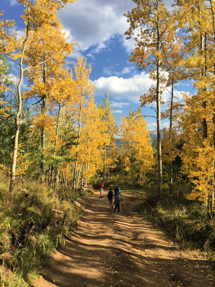 hiking-south-mount-elbert-trail-fall-aspens