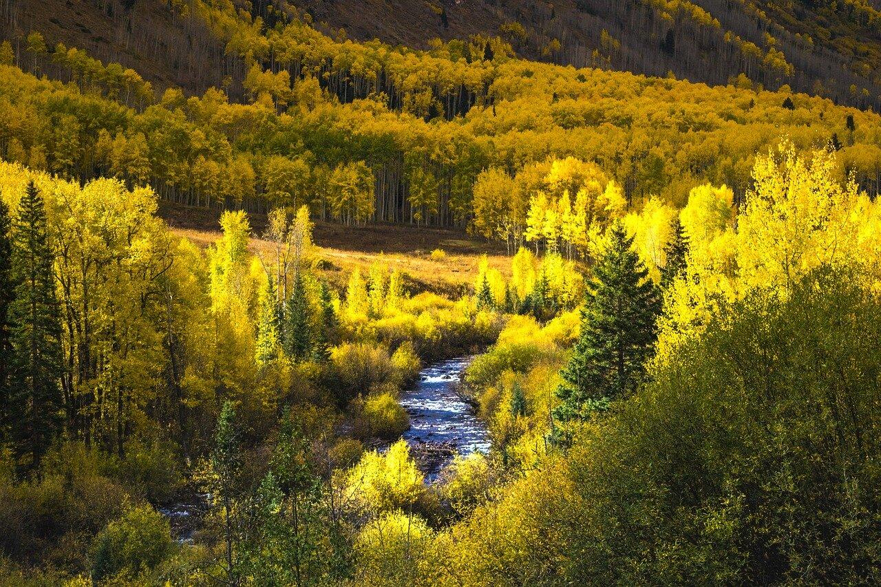 colorado-fall-colors-road-trip