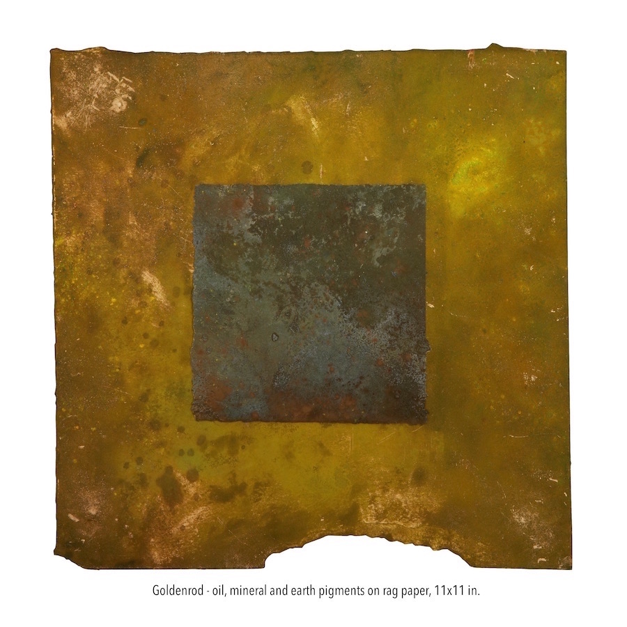 Goldenrod - oil, mineral and earth pigments on rag paper, 11x11 in. (1).jpg