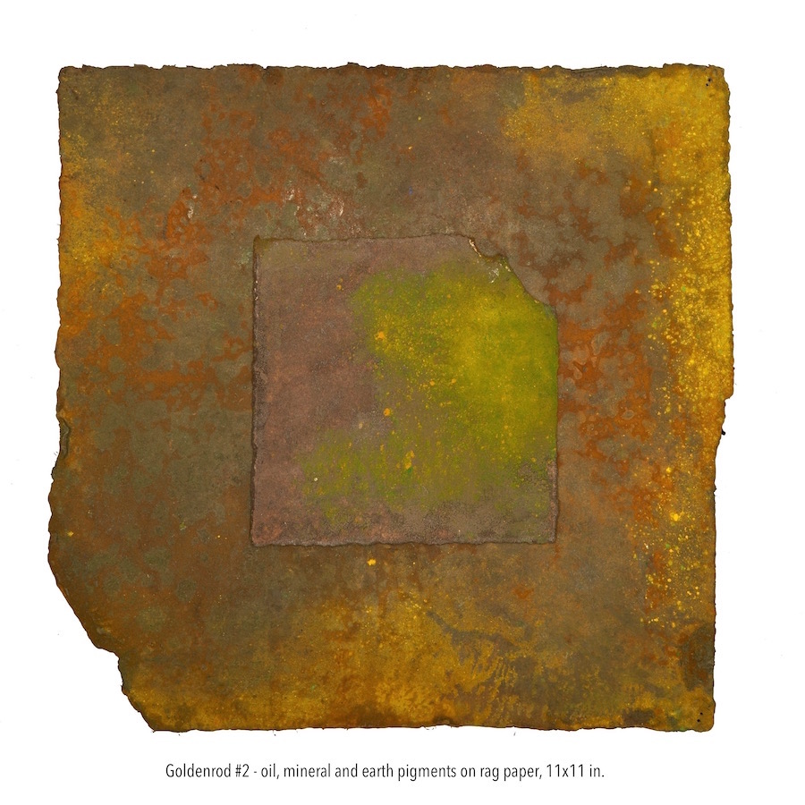 Goldenrod #2, oil, mineral and earth pigments on rag paper, 11x11 in. (1).jpg
