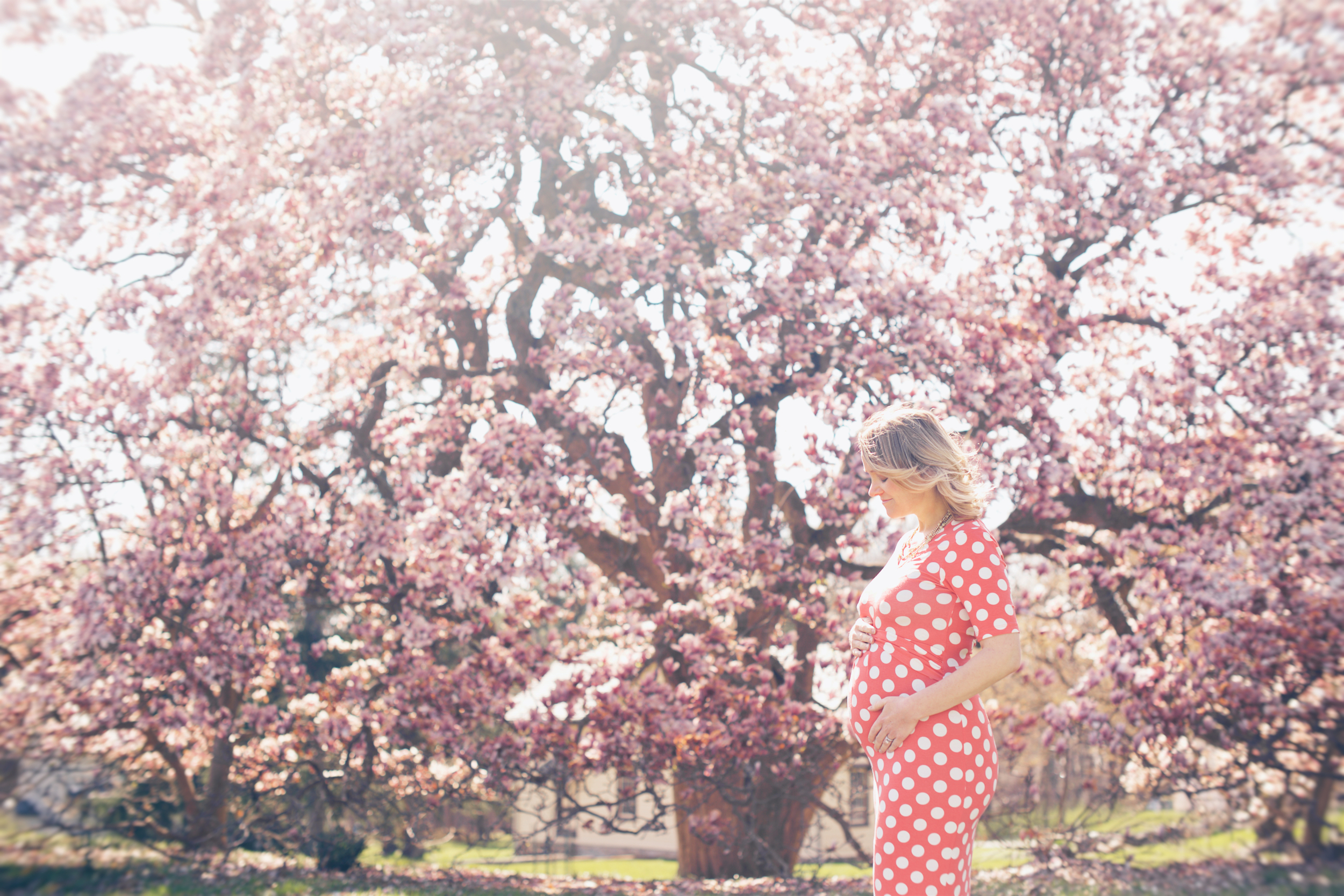 March 2016 In Bloom | Jenn carrying our twins