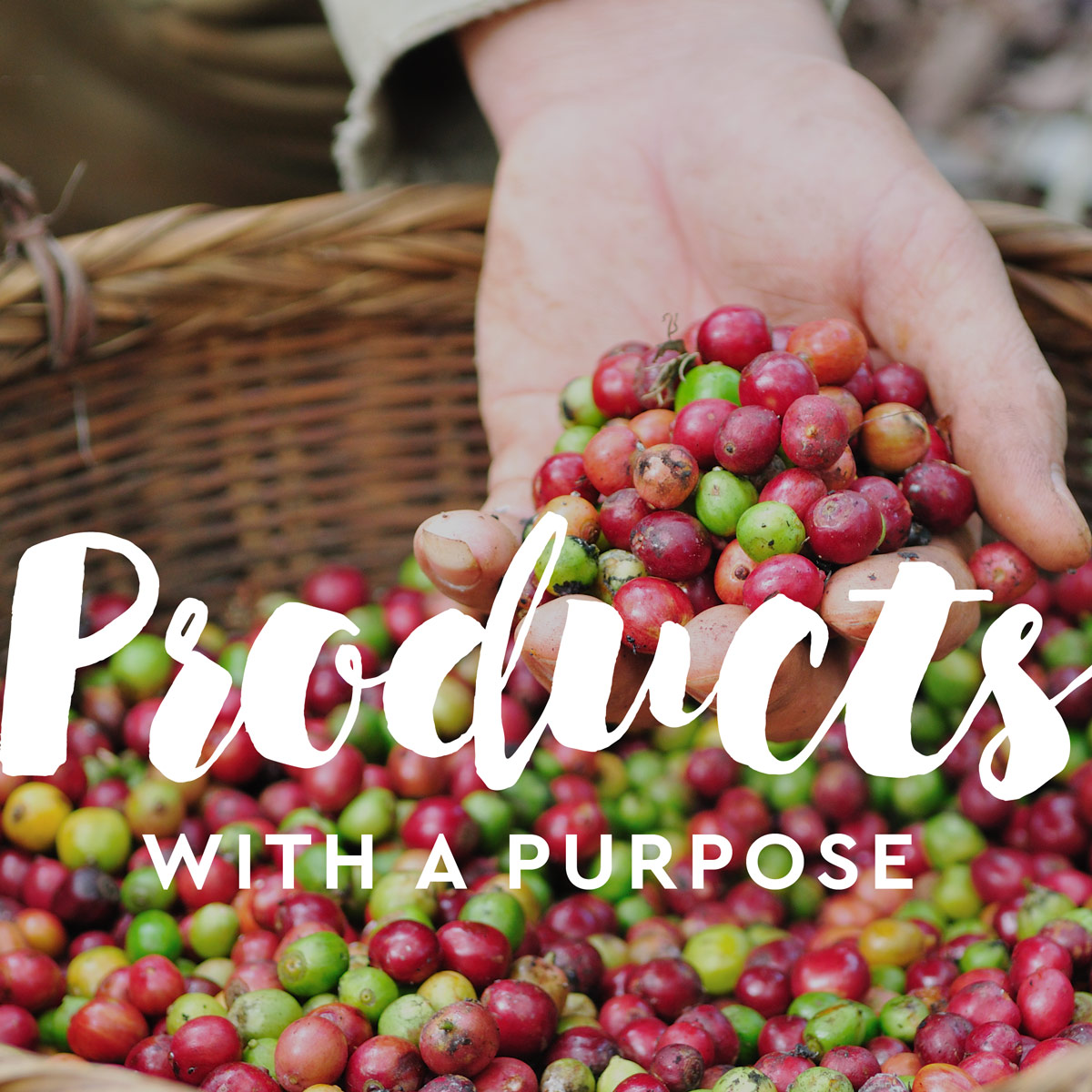 Sustainability Products with a Purpose