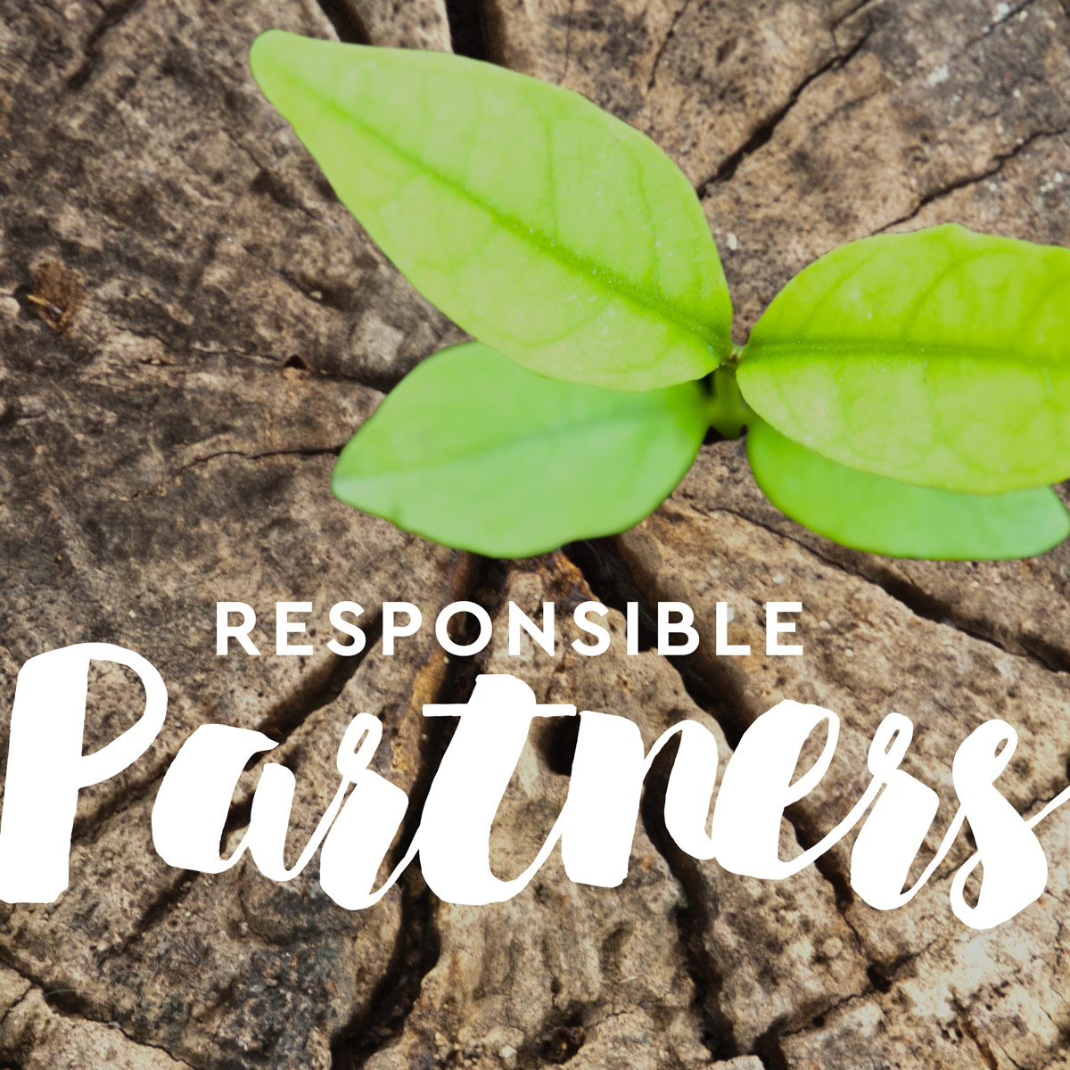 Sustainability Responsible Partners